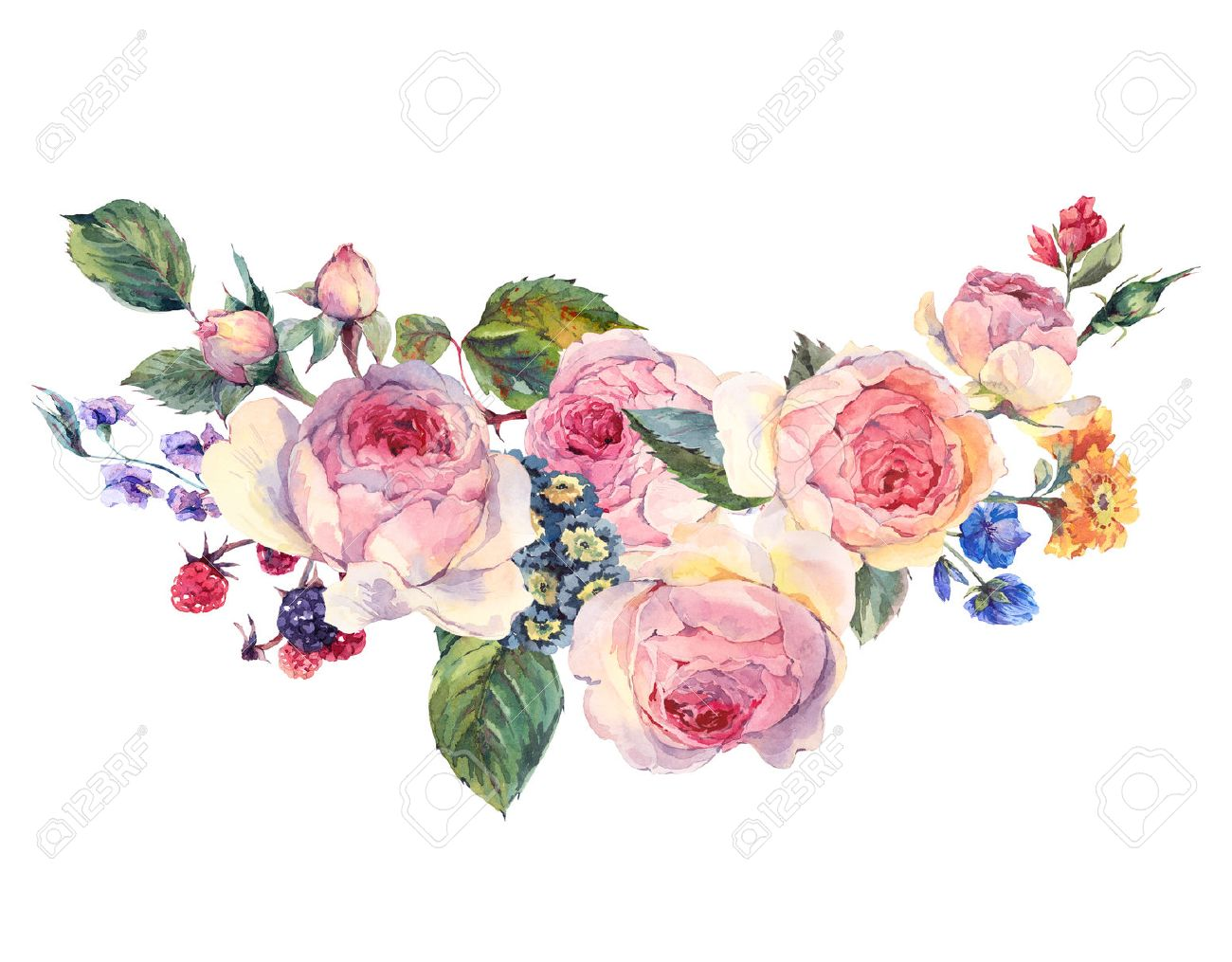 Classical vintage floral greeting card, watercolor bouquet of English roses and wildflowers, botanical natural watercolor illustration on white Background - 59797461