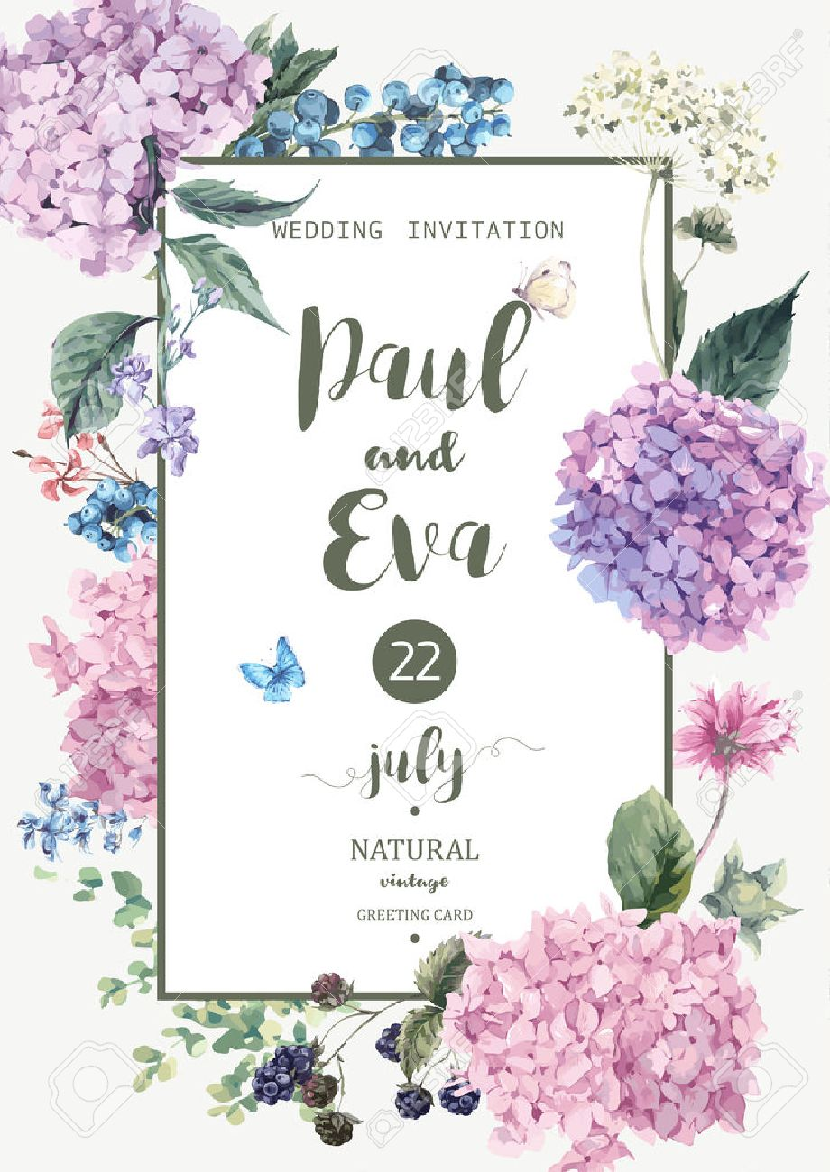 Vintage floral vector wedding invitation with Blooming Hydrangea and garden flowers, botanical natural hydrangea Illustration. Summer floral hydrangeas greeting card in watercolor style. - 59810552