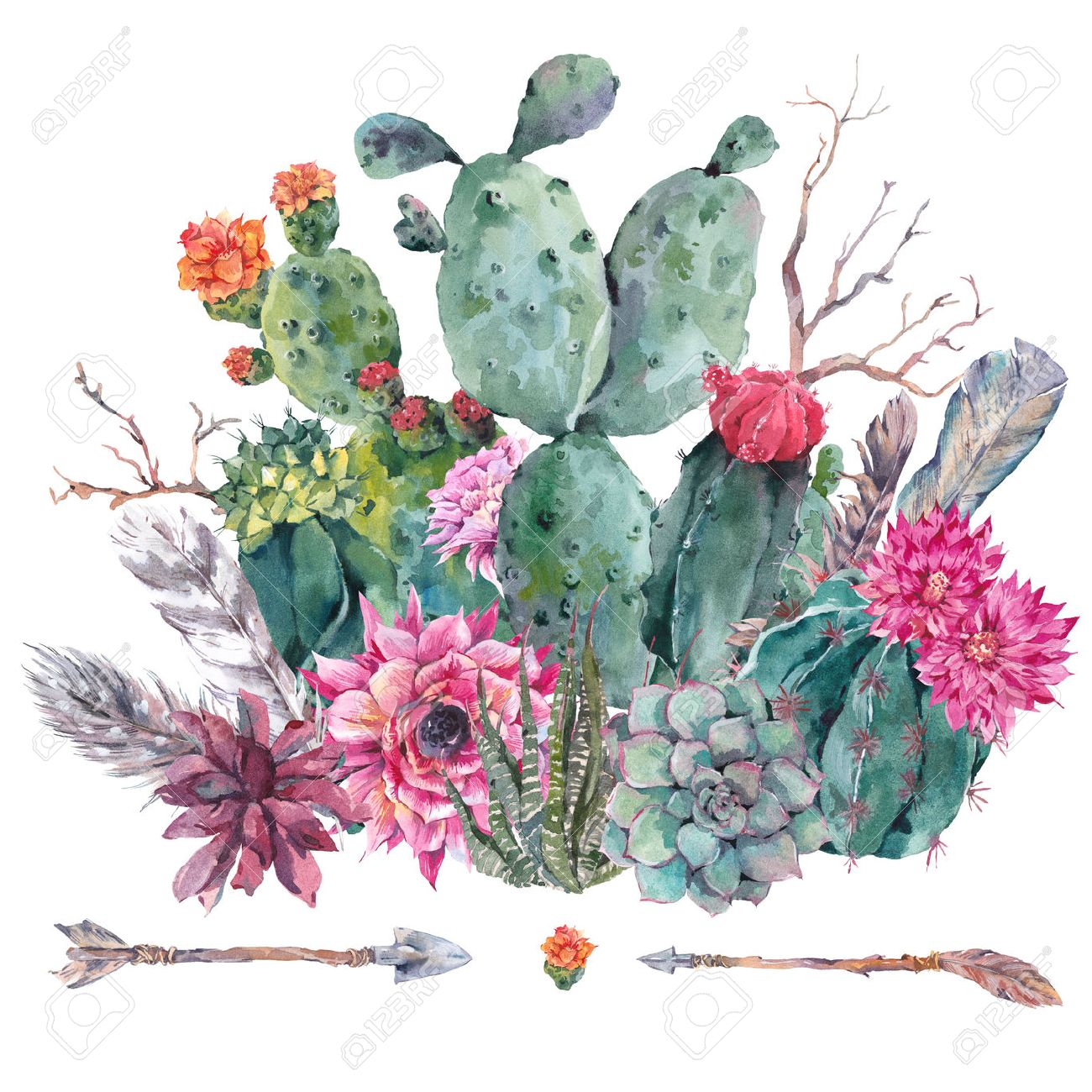 Exotic Natural Vintage Watercolor Bouquet In Boho Style. Cactus ...