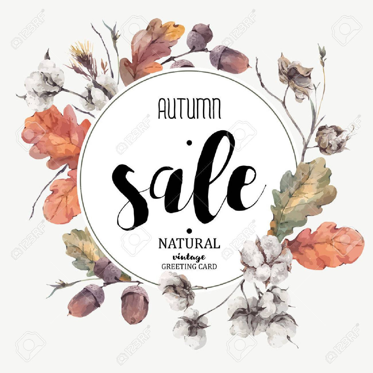 Autumn vintage bouquet of twigs, cotton flower, yellow oak leaves and acorns. Botanical illustrations. Sale card. Isolated on white background Stock Vector - 60772257