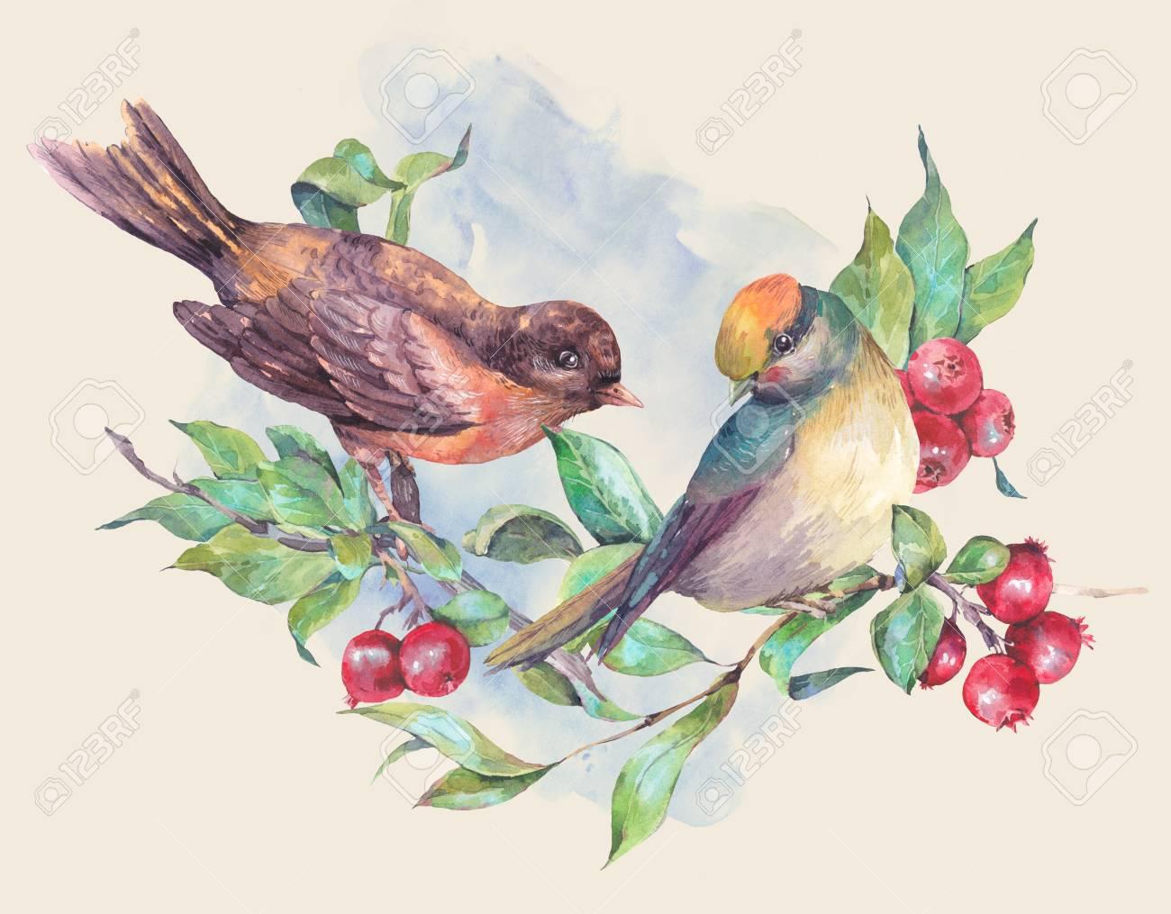Vintage Dessin A La Main Carte Aquarelle Paire D Oiseaux Sur Une