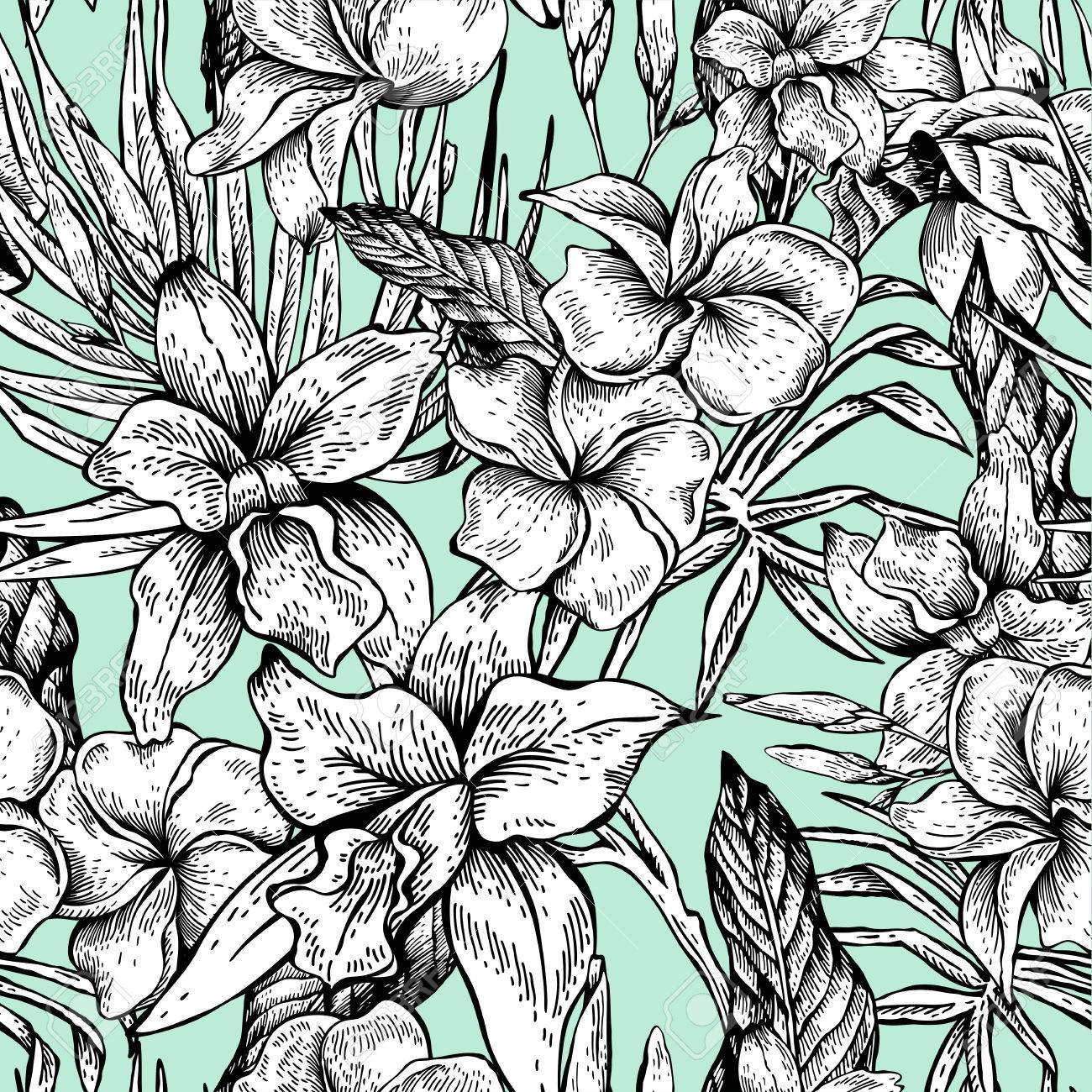 Vector vintage floral tropical seamless pattern Banque d'images - 73256055