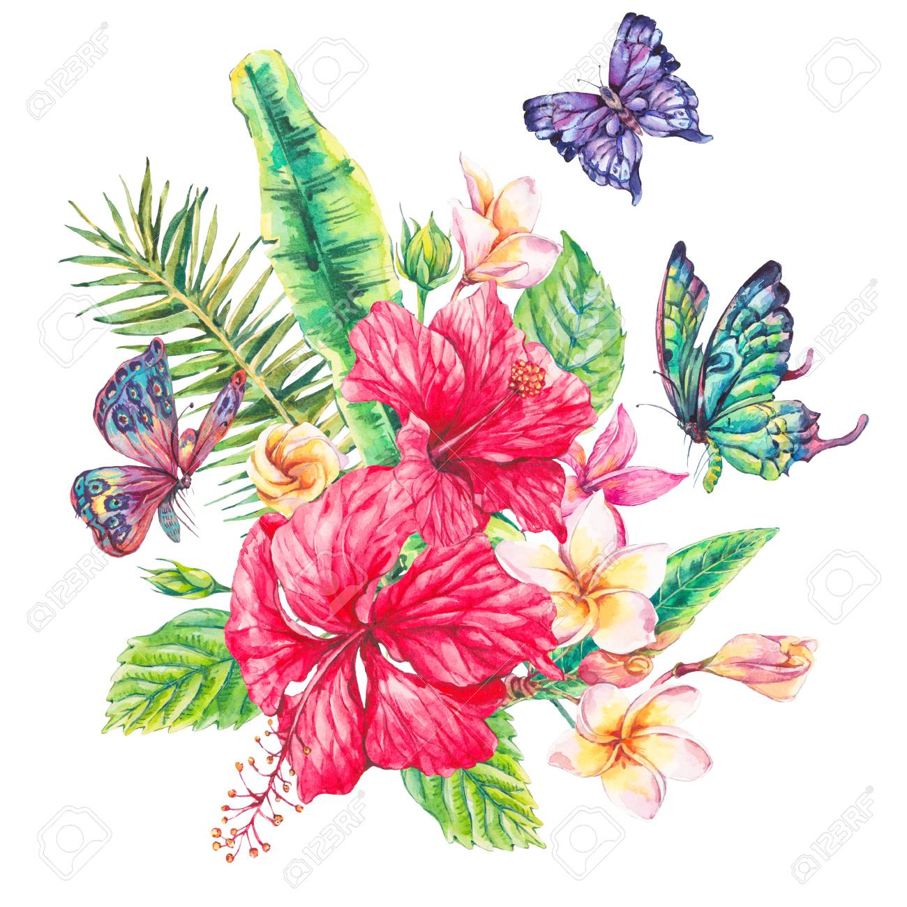 watercolor vintage floral tropical greeting card exotic flowers