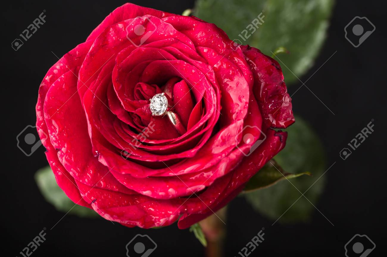 Rosa con anillo de compromiso