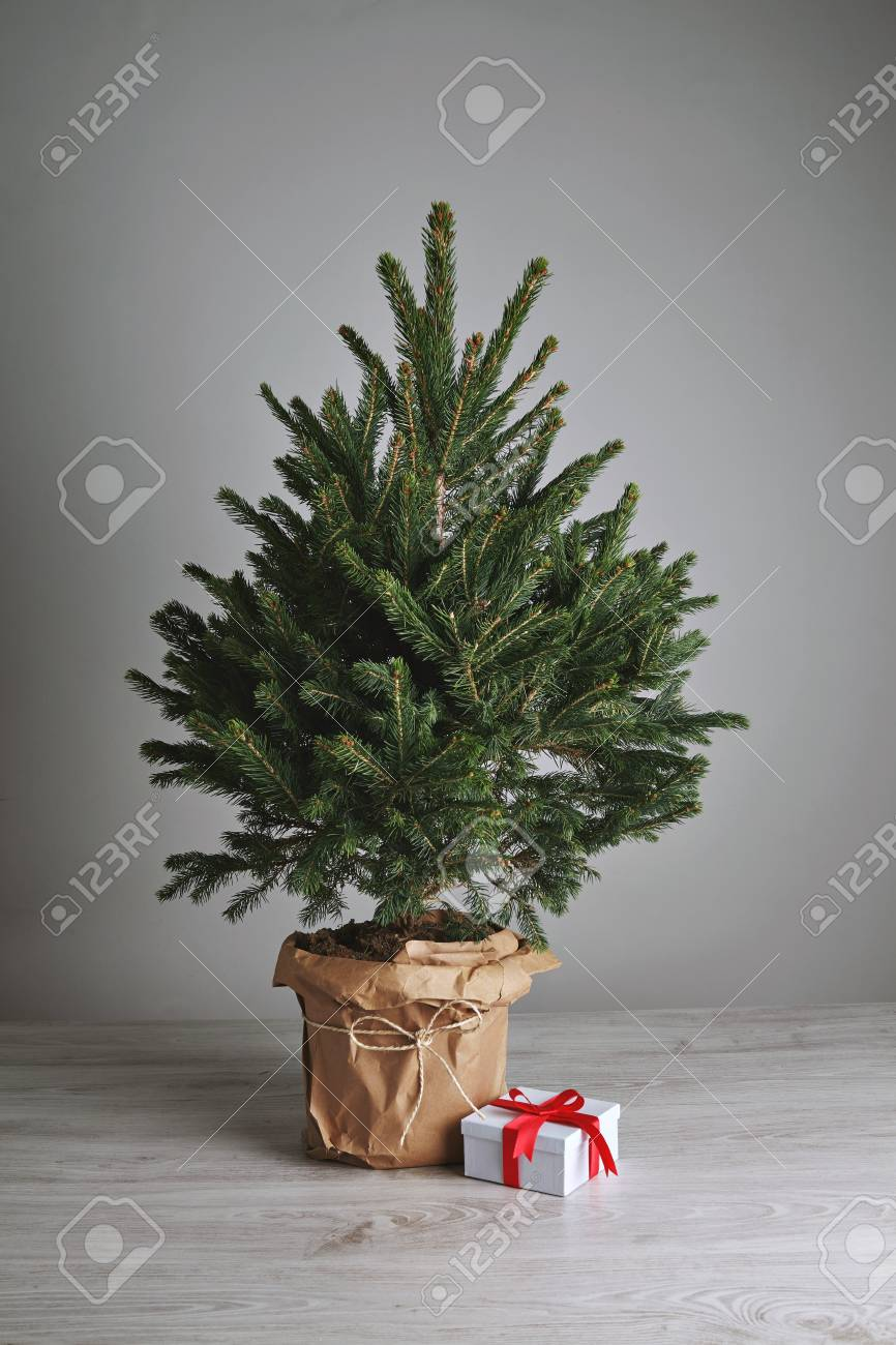Christmas Gift In A White Box With A Red Bow On The Floor Next To A