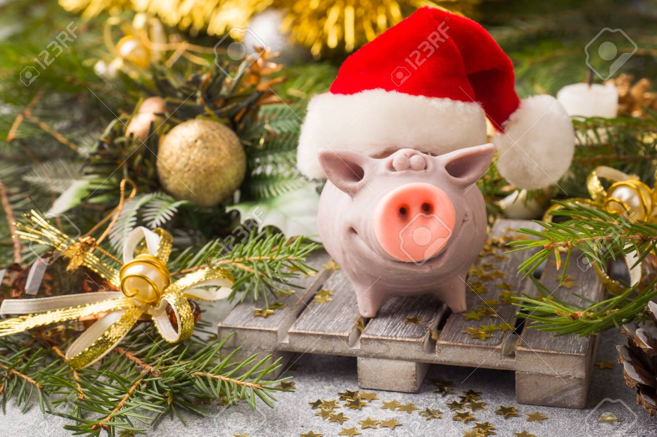 Christmas Pig.Figure Pig In A Santa Claus Hat On The Of Christmas Trees Christmas