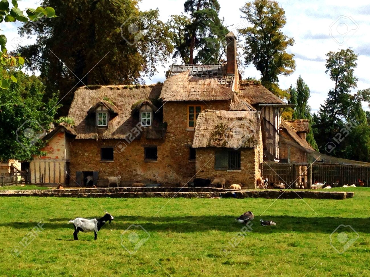 Old French Country House With Animals Stock Photo Picture And - French country house