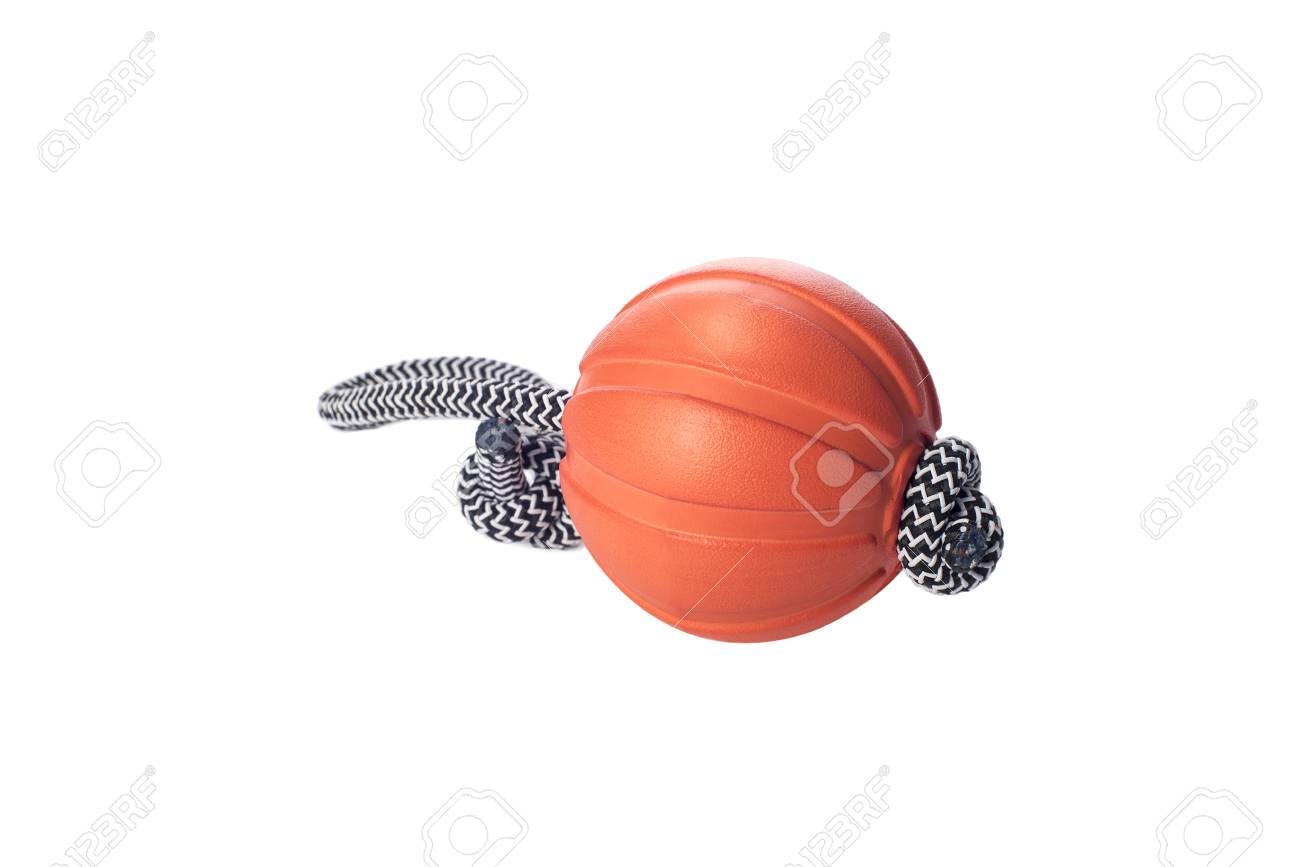 Dog Training Ball