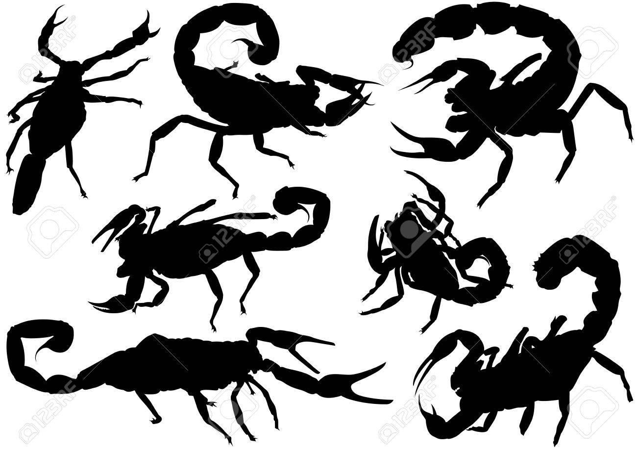 黒の細かいイラスト ベクトルのサソリのシルエット セットのイラスト素材 ベクタ Image