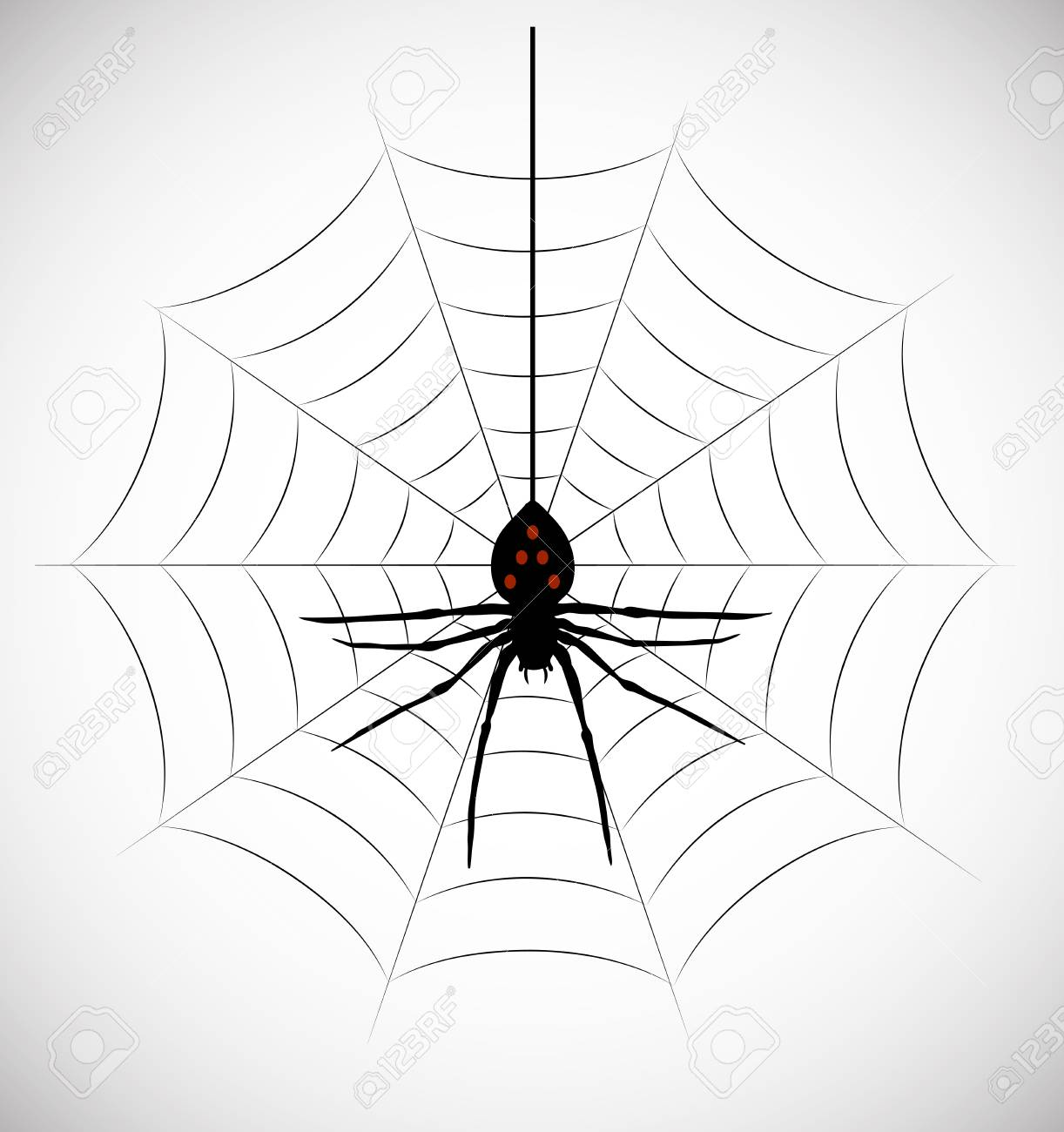 on the image the silhouette of a spider in a web is presented Stock Vector - 18564295
