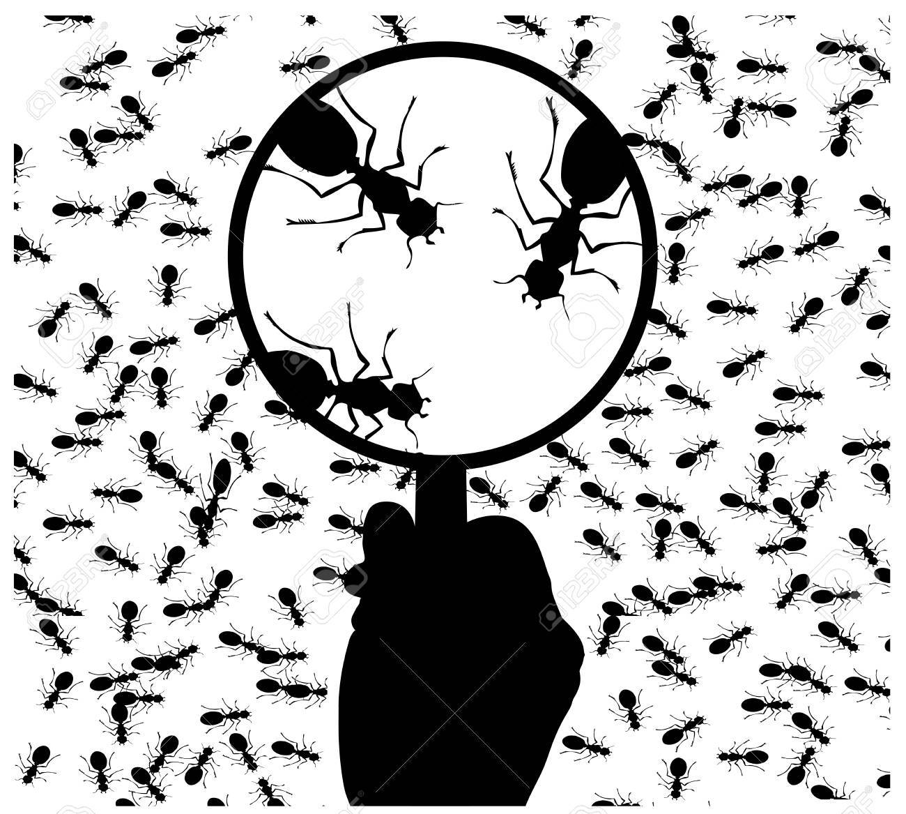 ant under a magnifying glass Stock Vector - 19246124