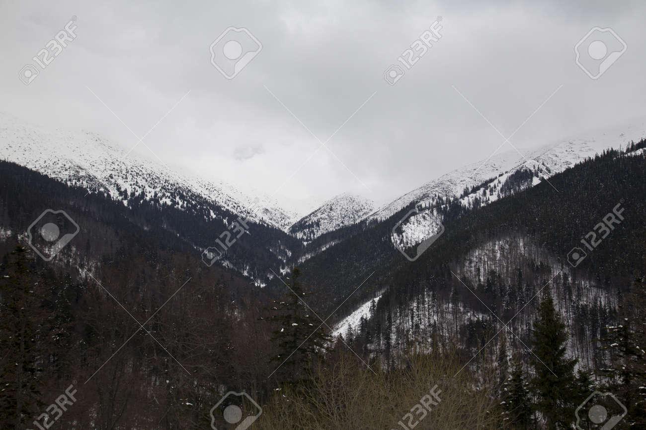snow mountain Slovakia ski winter Jasna Europa - 164716855