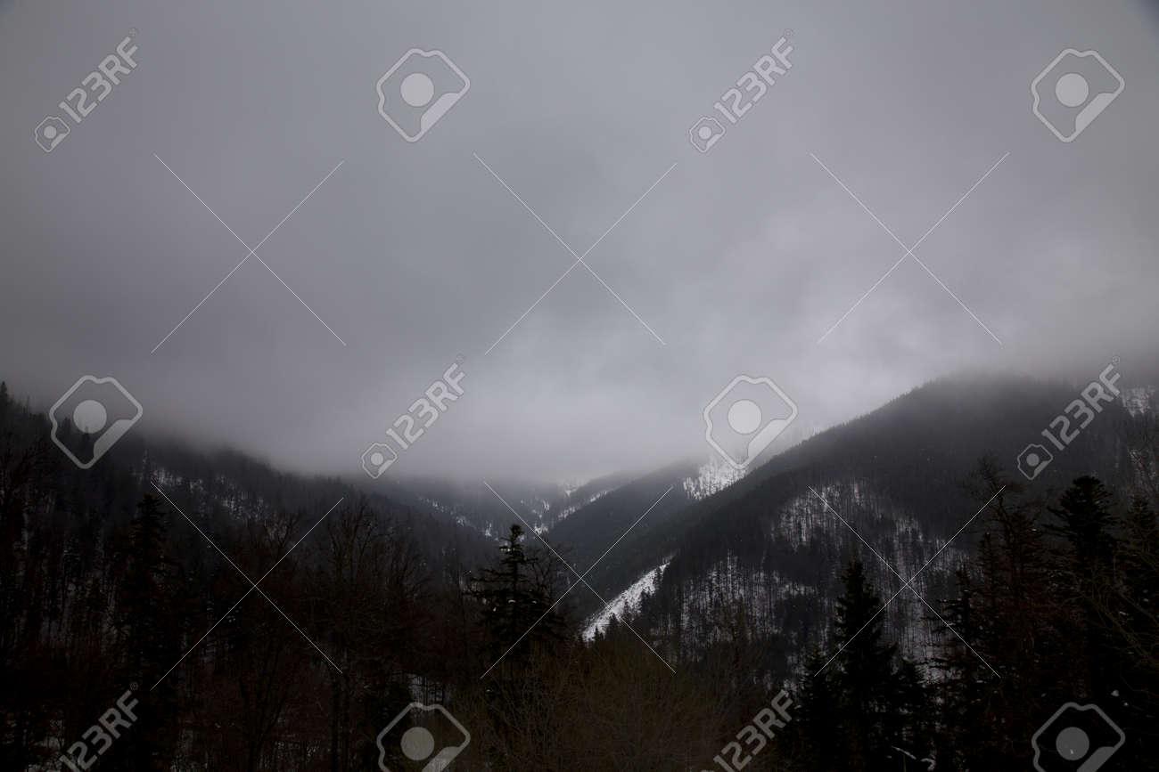 snow mountain Slovakia ski winter Jasna Europa - 164717282