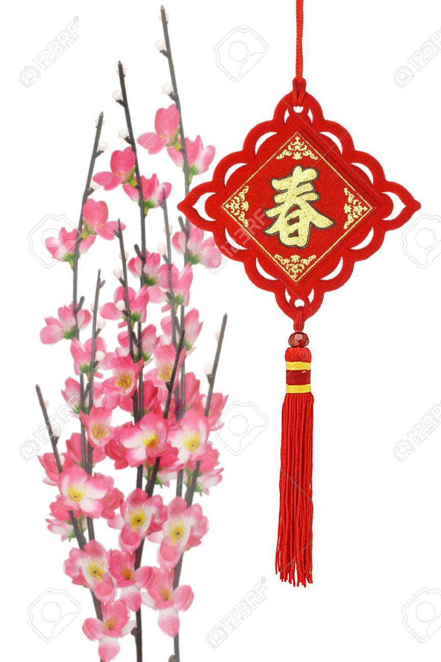 Chinese new year traditional ornaments and plum blossom on white background Stock Photo - 9593342