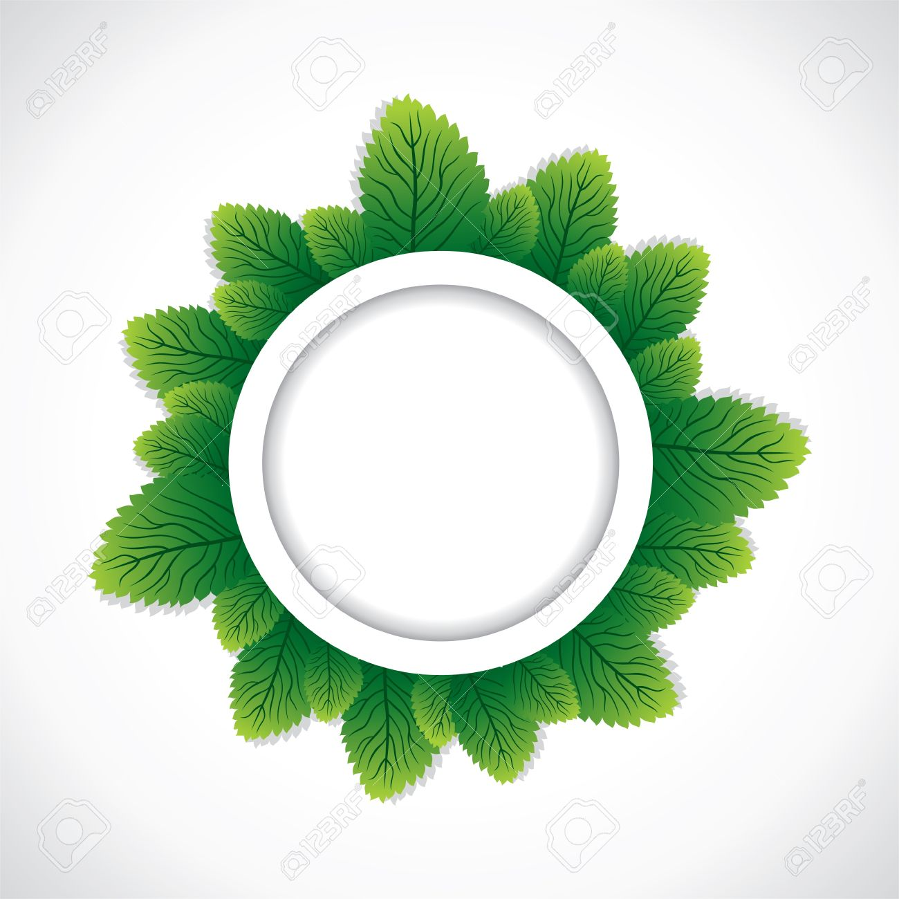green round leaf border stock Stock Vector - 16904535