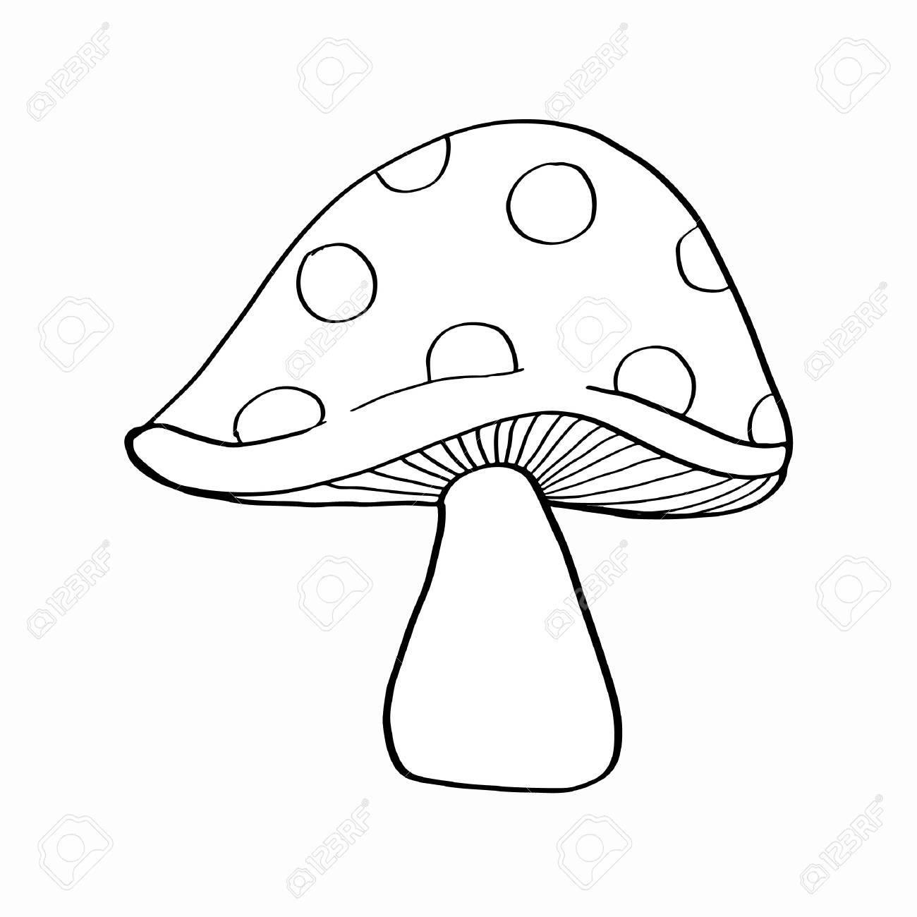 8 Pilze Zum Ausmalen - Besten Bilder von ausmalbilder