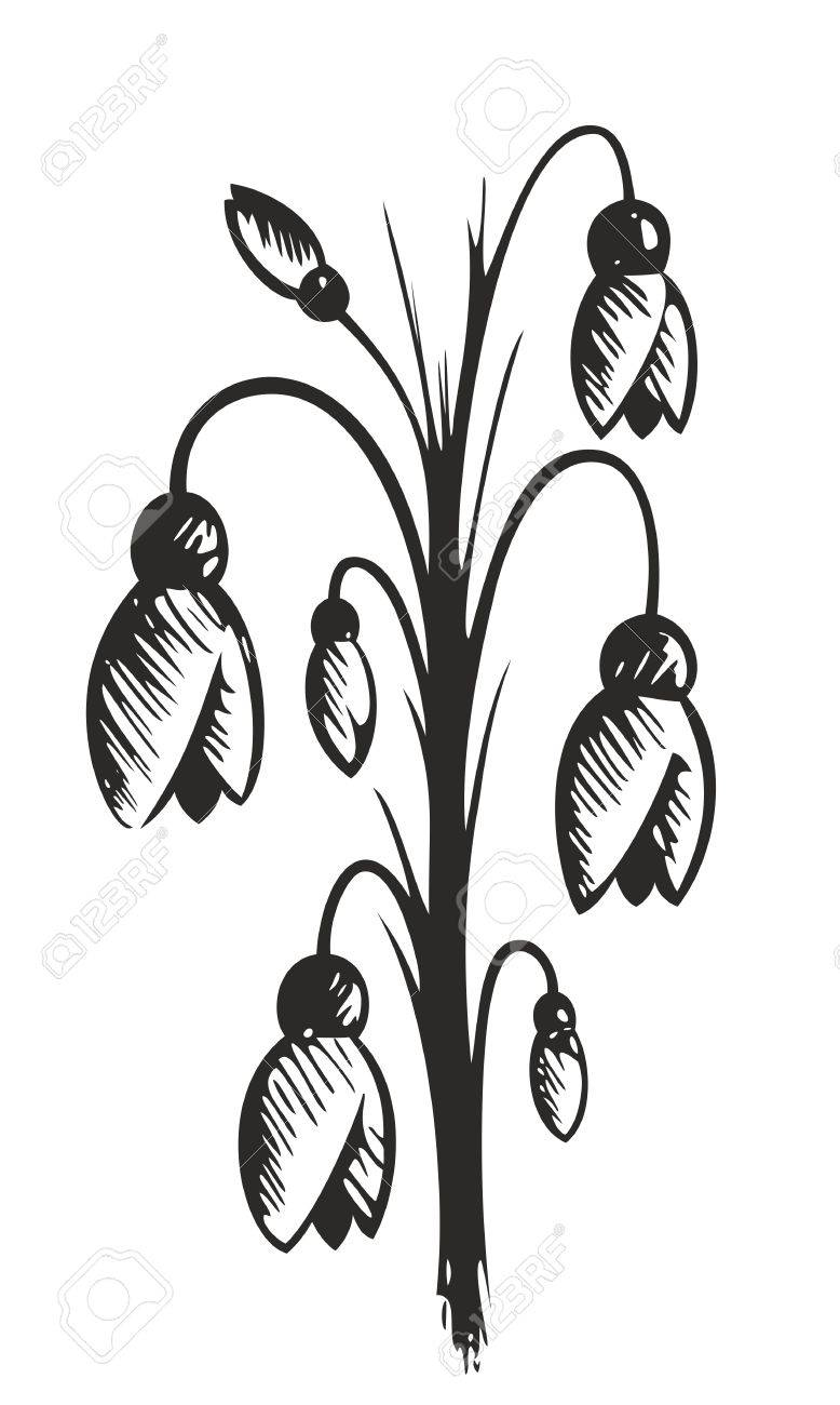 Drawing Of Spring Flowers Royalty Free Cliparts Vectors And Stock