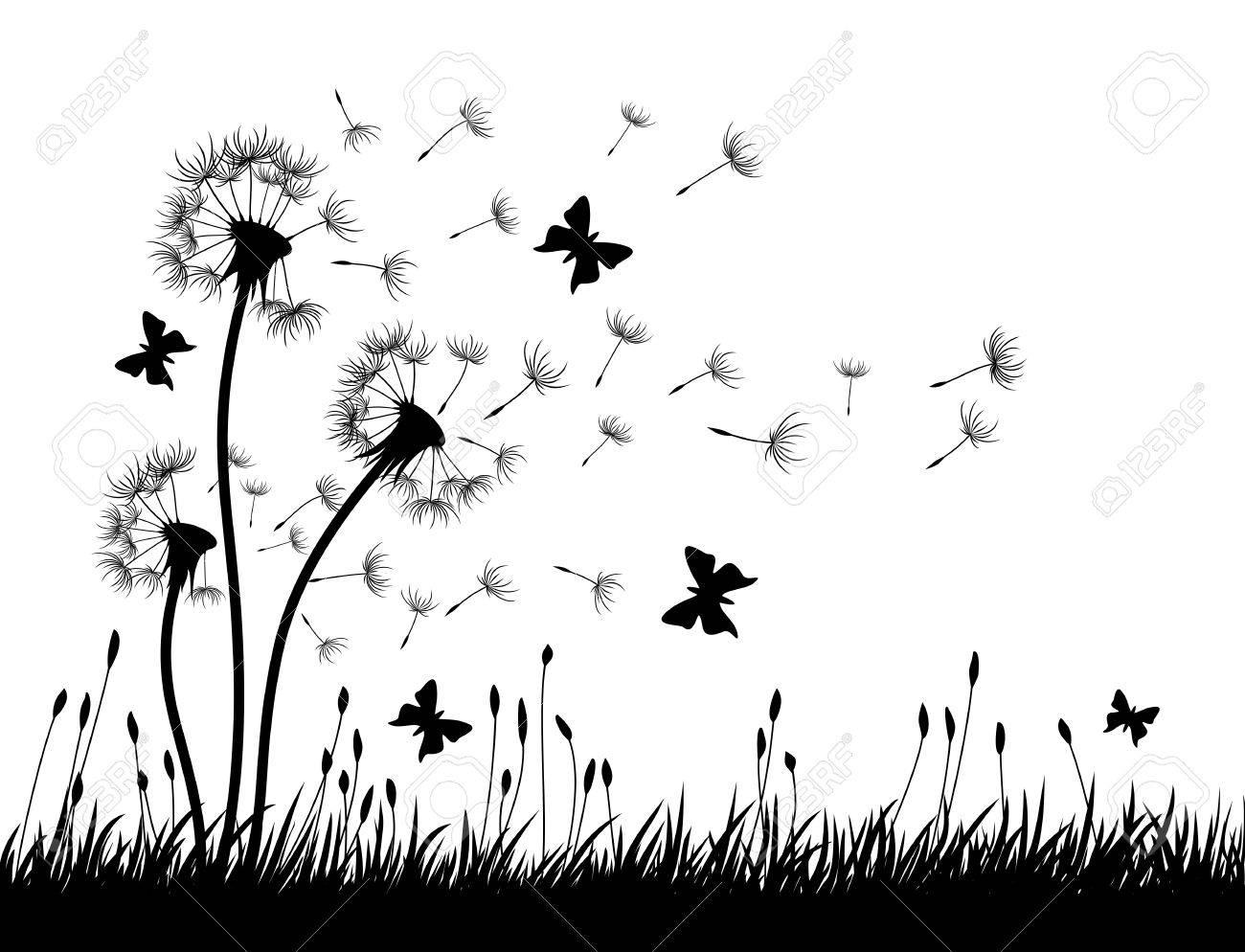Dandelions with butterflies. - 67099602