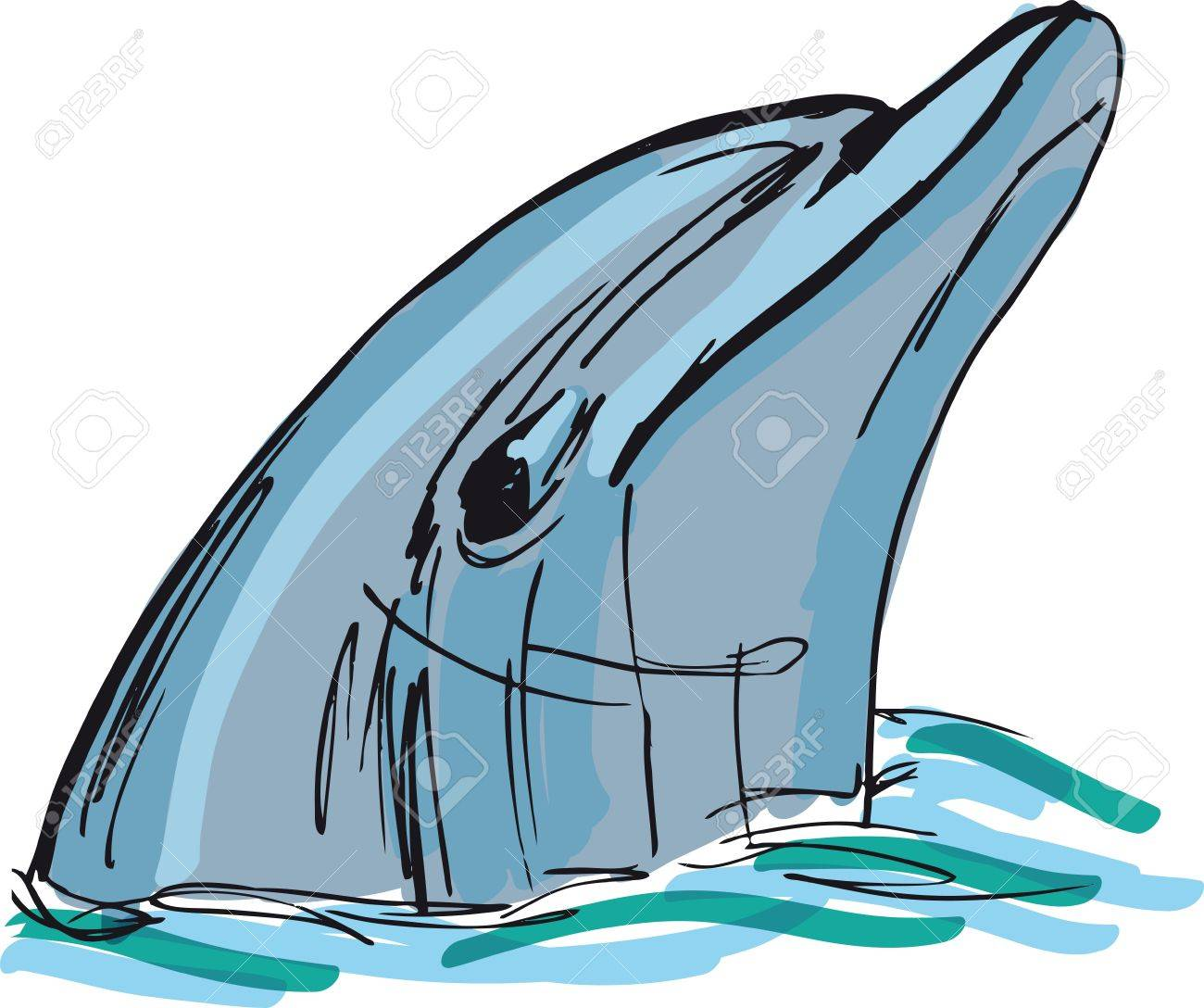sketch of dolphin face illustration royalty free cliparts