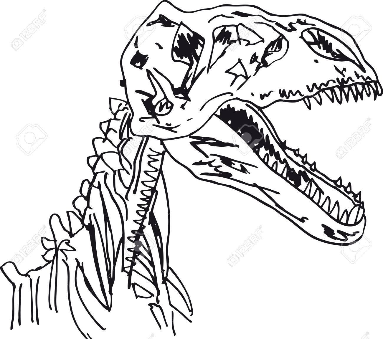 sketch of dinosaur fossil vector stock vector