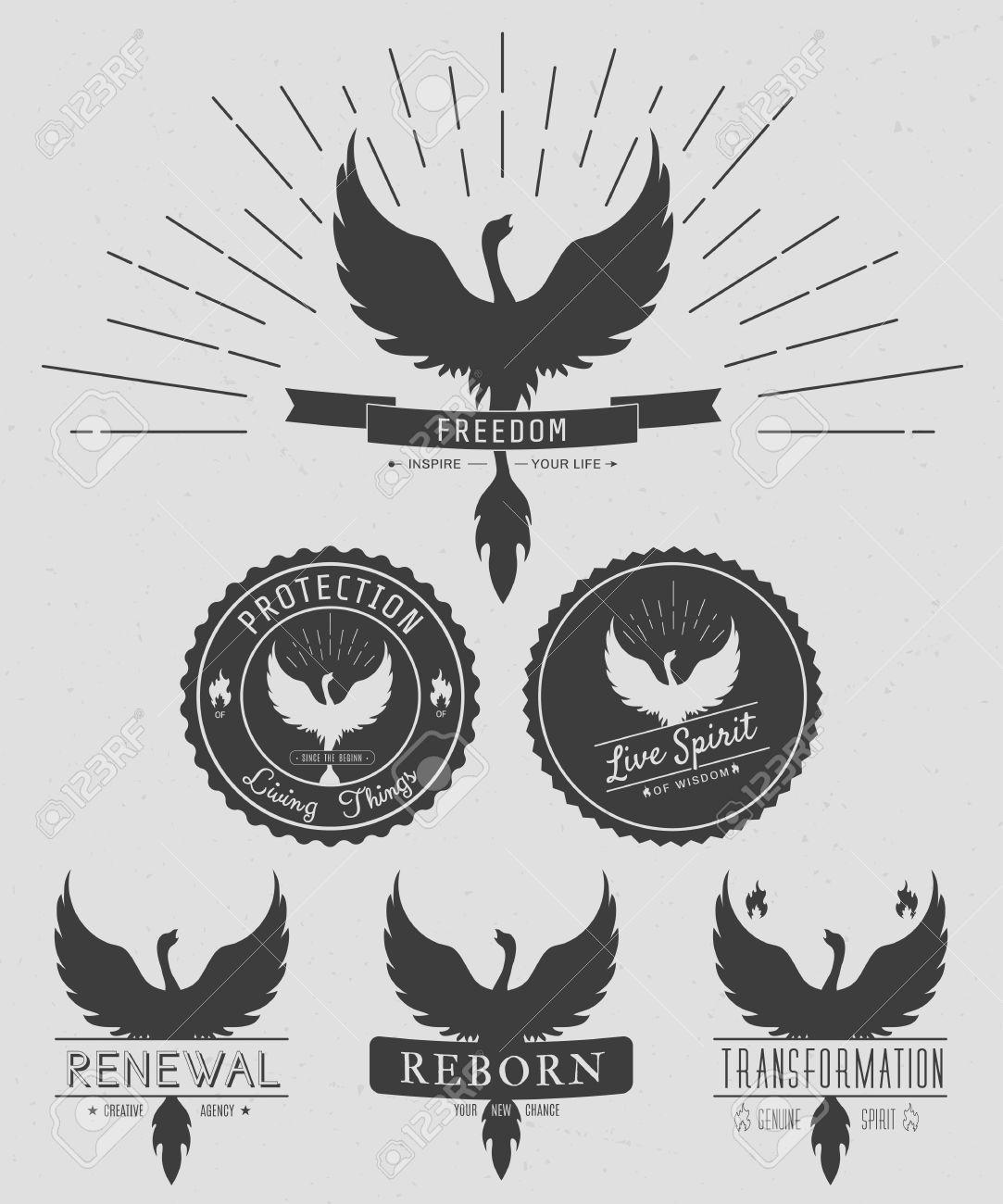 Vector set of phoenix symbol vintage logos emblems silhouettes vector set of phoenix symbol vintage logos emblems silhouettes and design elements symbolic biocorpaavc Gallery