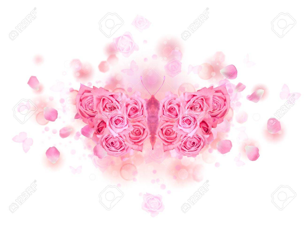 Mirrored butterfly with spreading wings, made of pink roses, on a soft background of bokeh particles, flying petals and rose buds, isolated on white Stock Photo - 14604337