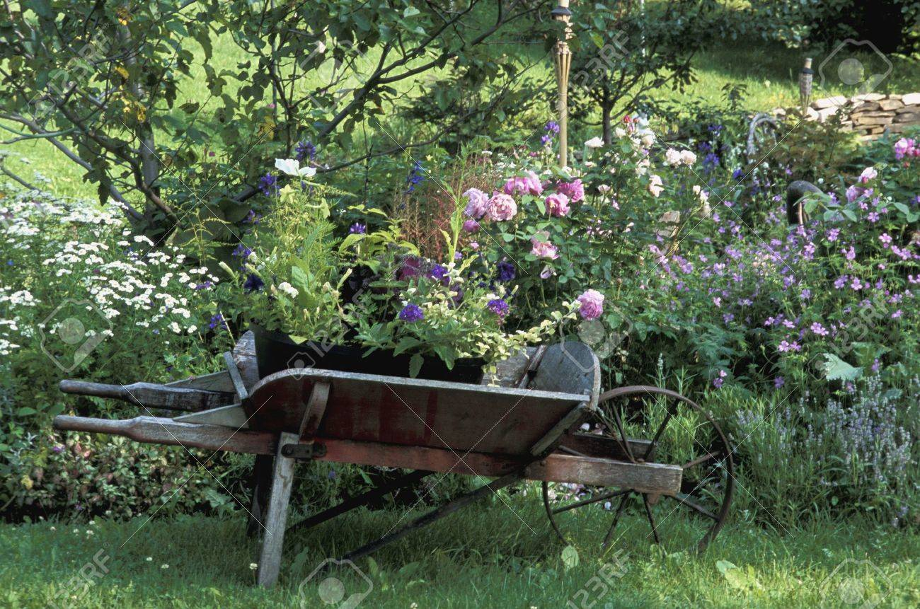 Pretty cottage garden Stock Photo - 6215426