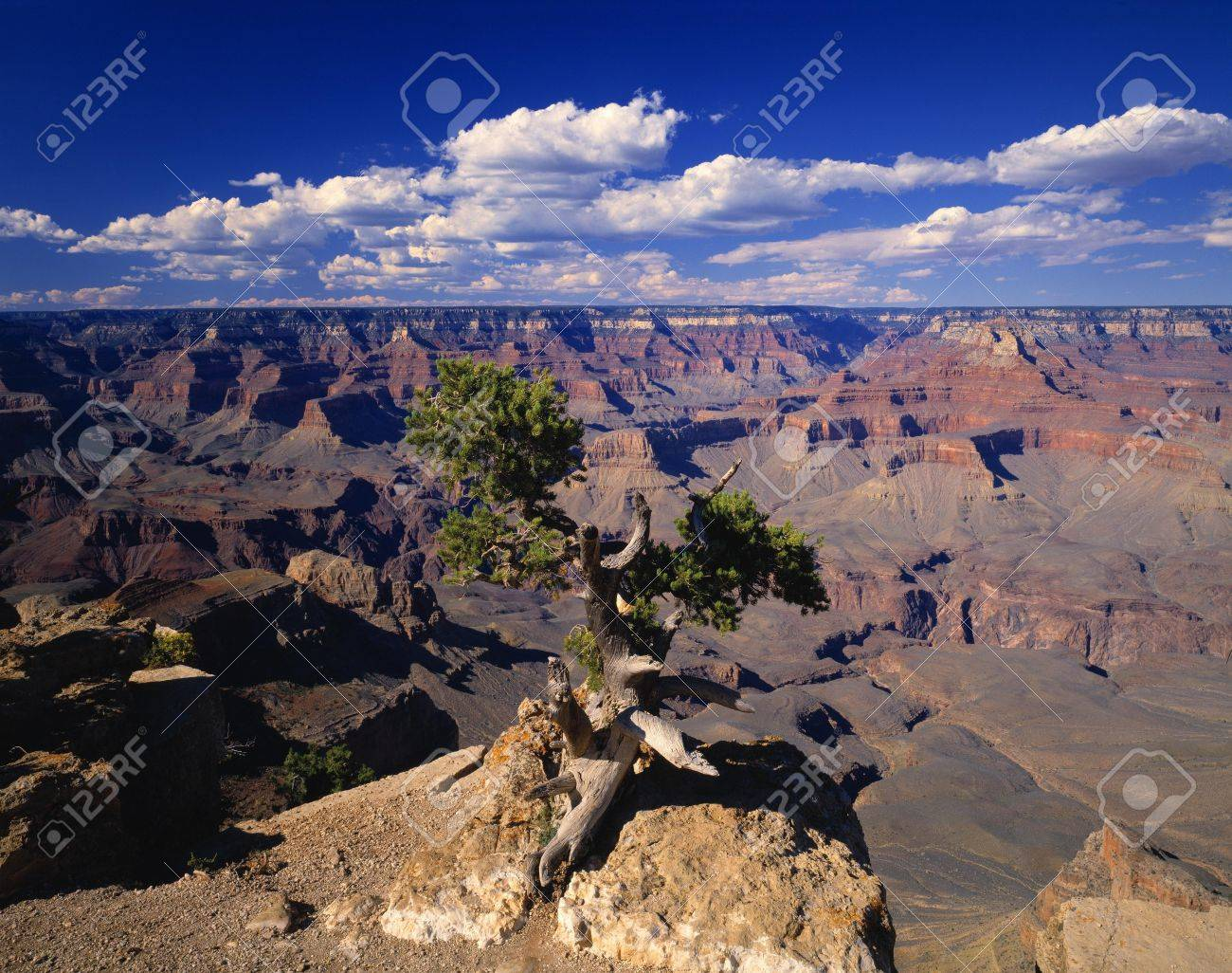 A scenic canyon Stock Photo - 5713541