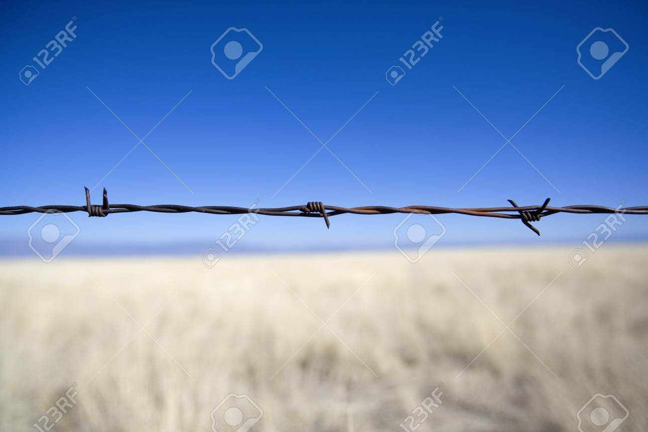 Barbed wire fence Stock Photo - 7559259