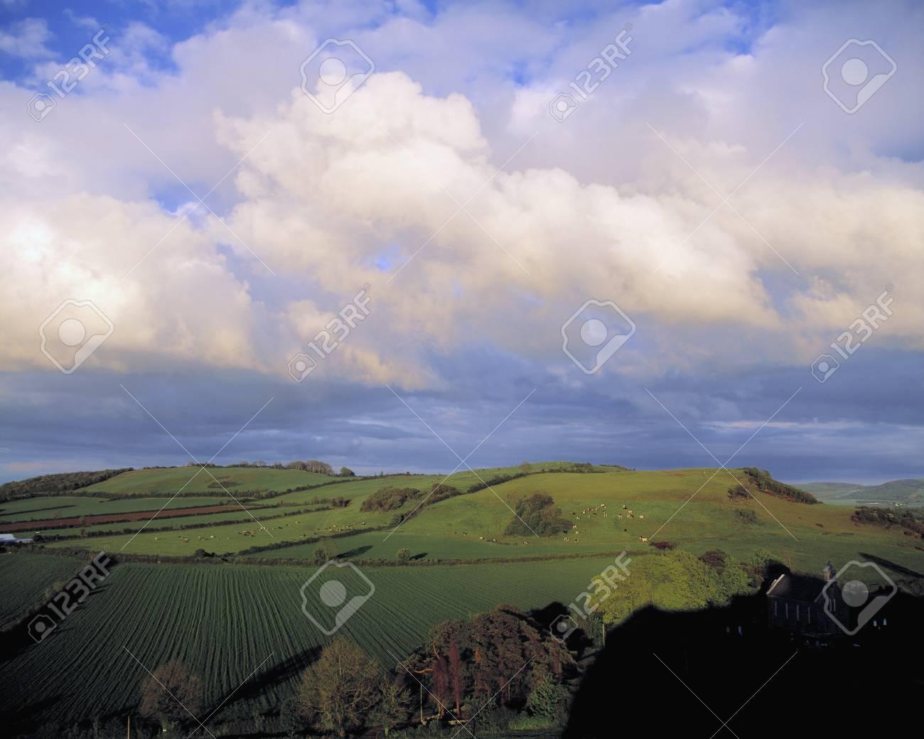 Fields around Dunamace, Co Laois, Ireland Stock Photo - 7559333