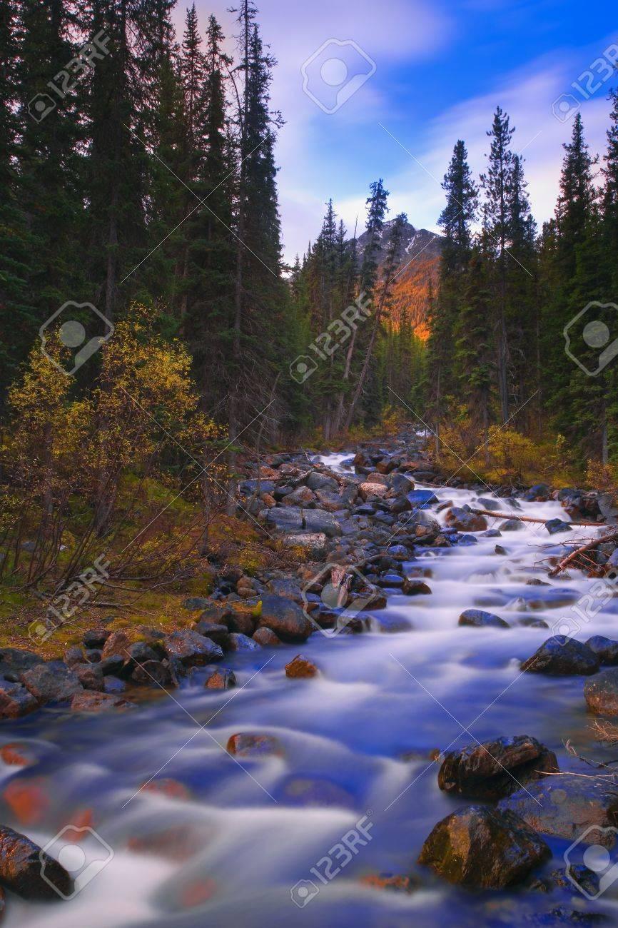 Moraine Creek, Banff National Park, Alberta, Canada Stock Photo - 7559430