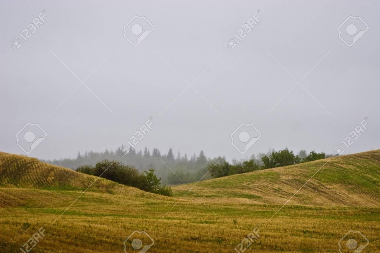An empty rolling field Stock Photo - 7559500
