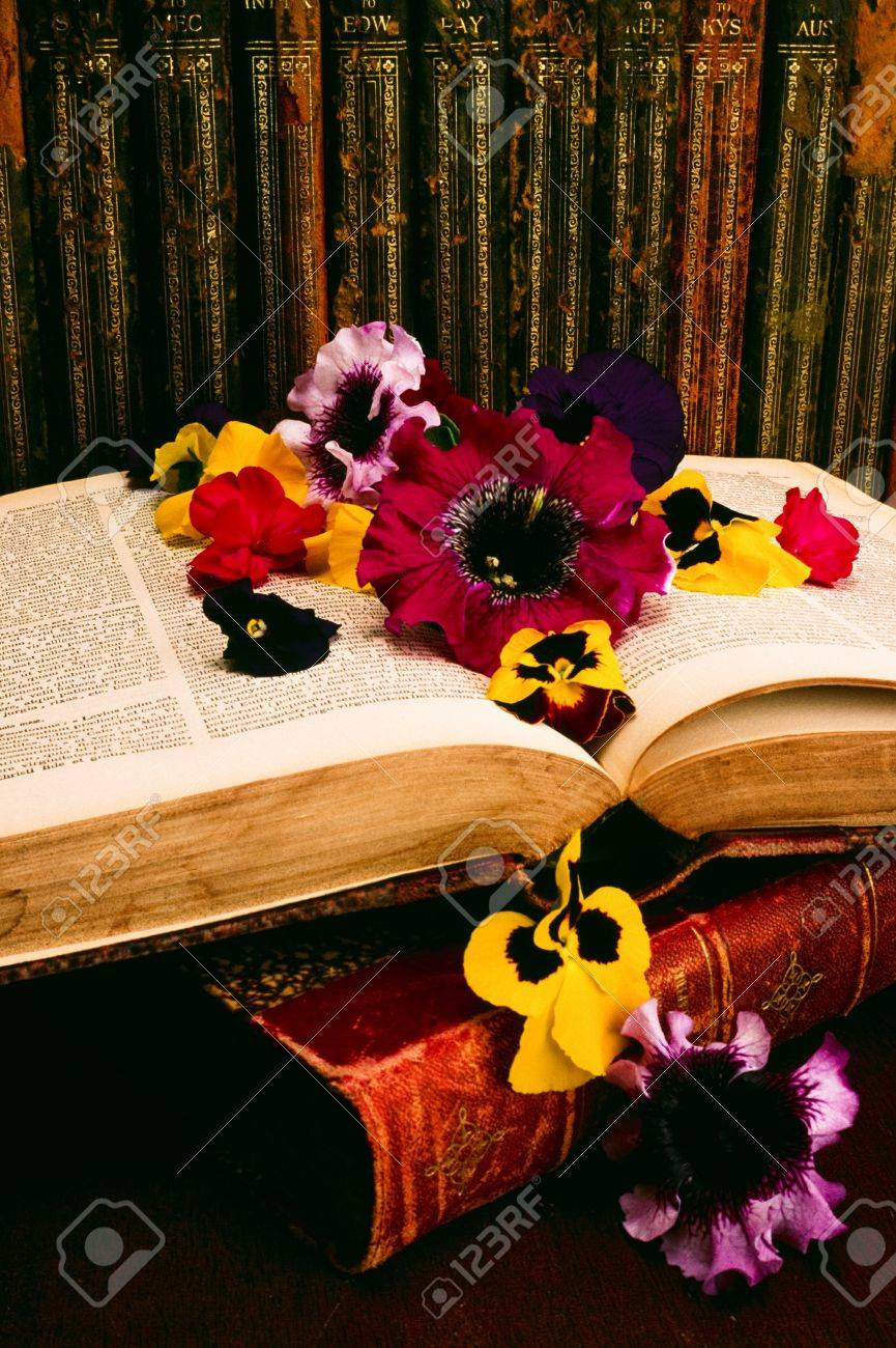Historic books and floral arrangement Stock Photo - 8243765