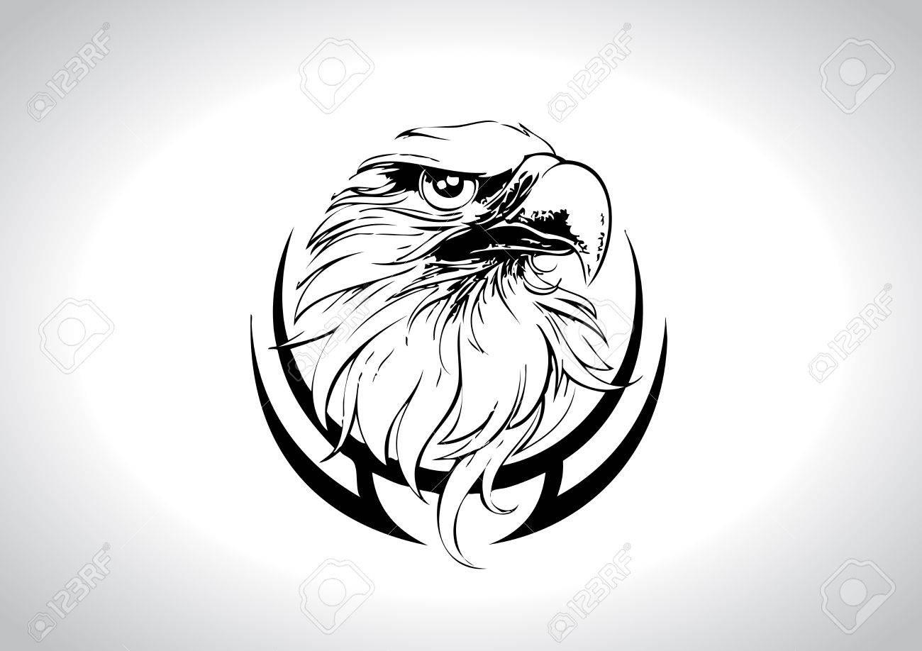 Eagle Head Line Art Vector Illustration Stock Vector - 9867910