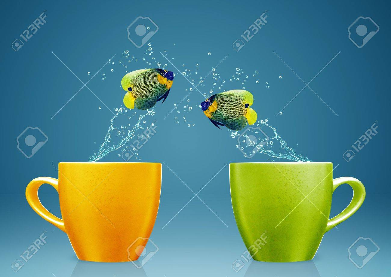 Angelfish jumping out of cup with water splashes and Acrobatic movement. Stock Photo - 15551282