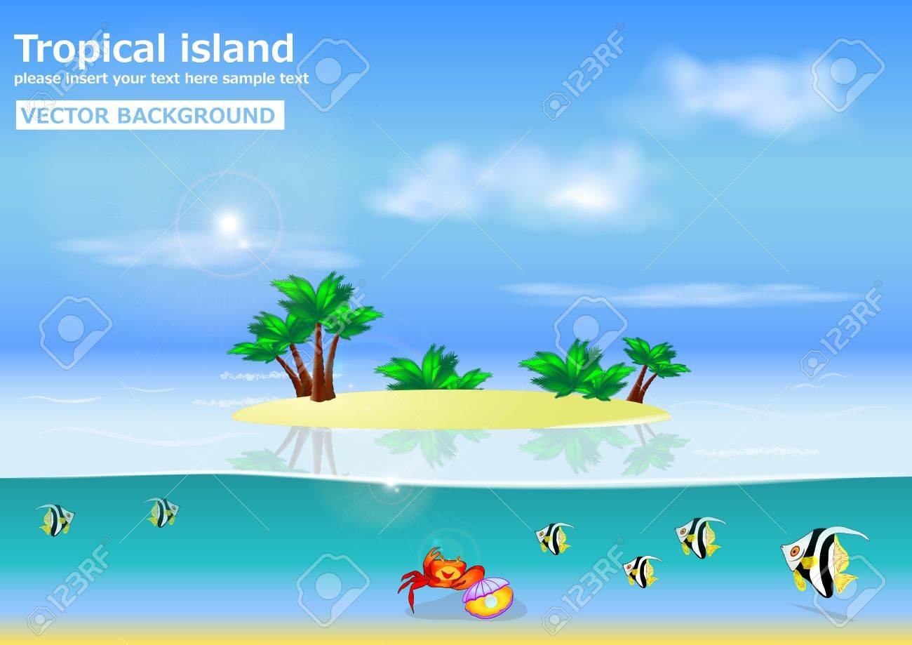 Wonderful summer background  tropical island  vector  with place for your text Stock Vector - 17591960