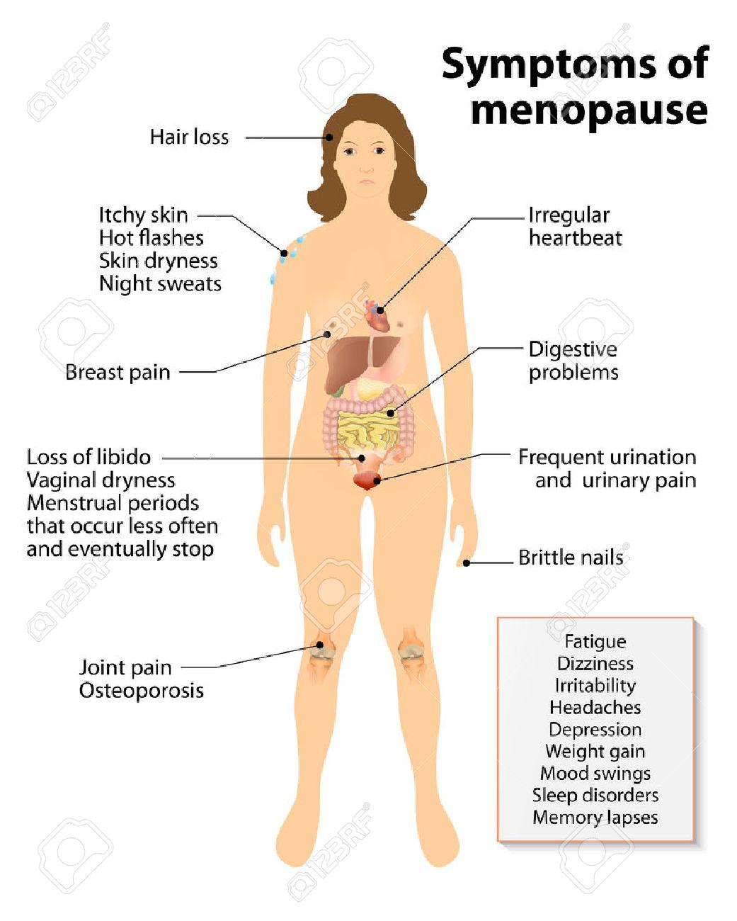 Menopausia. Regístrate Y Síntomas. Silueta De La Mujer Con Los ...
