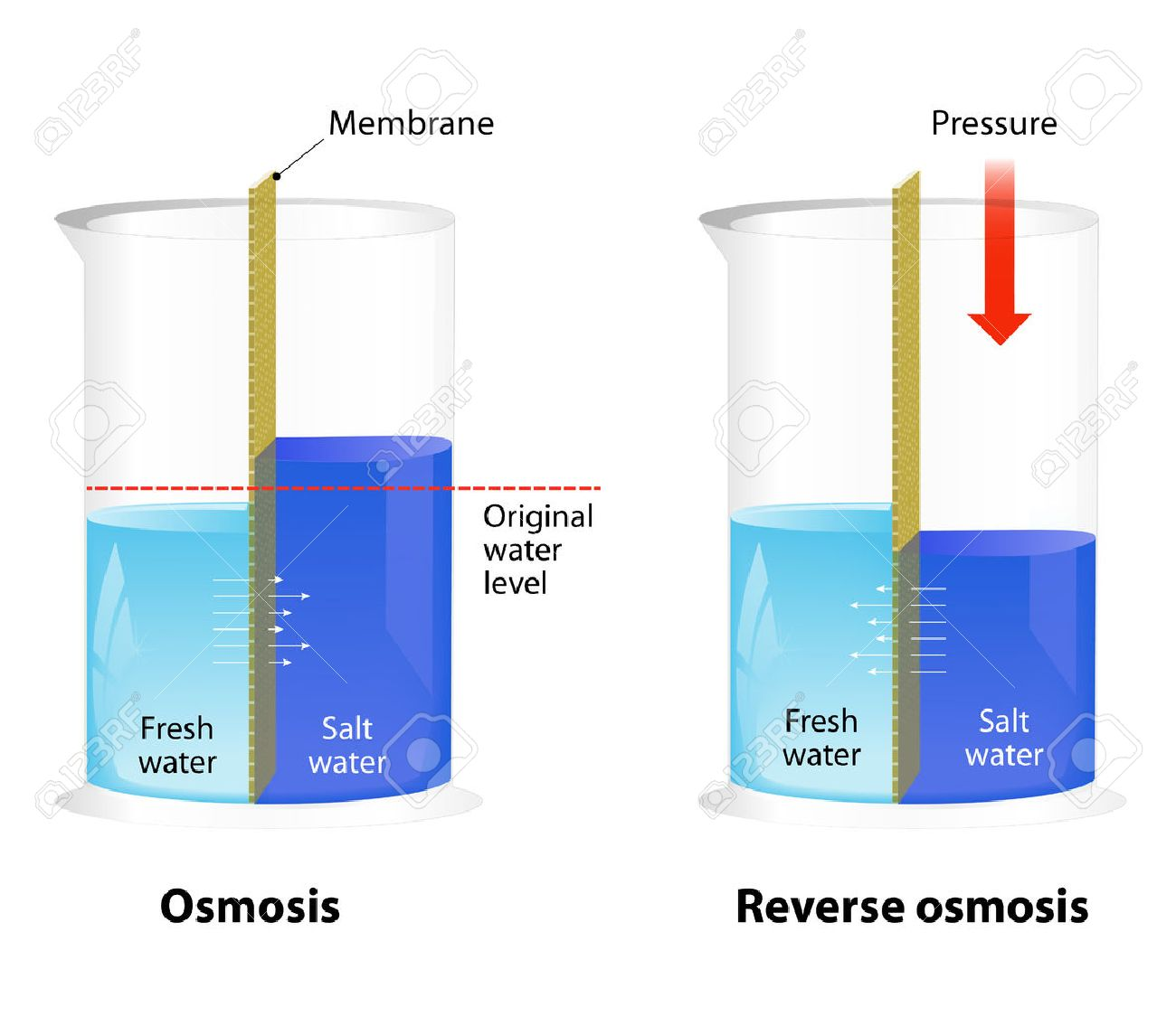 Where To Get Reverse Osmosis Water Difference Between Osmosis And Reverse Osmosis Water Passing