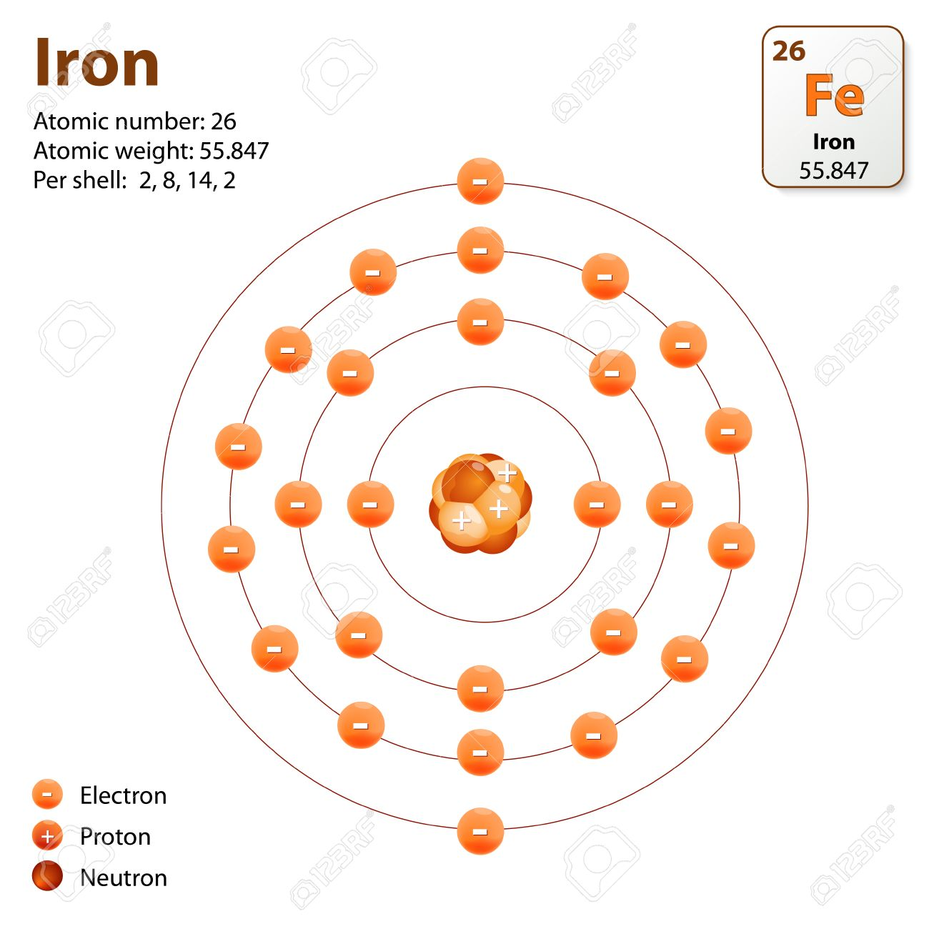 Atom iron this diagram shows the electron shell configuration this diagram shows the electron shell configuration for the iron atom stock vector pooptronica Images