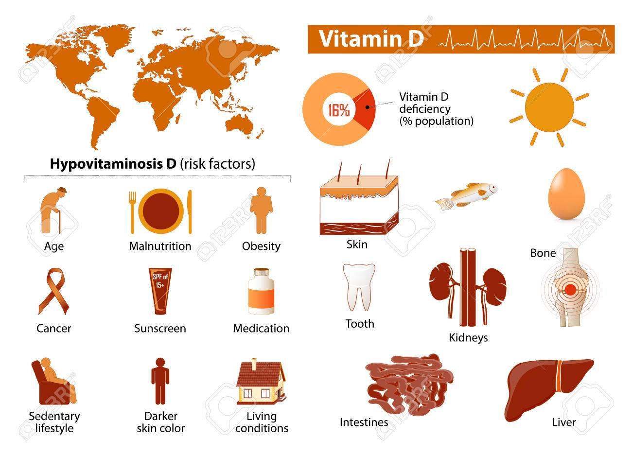 Vitamin d medical infographic set elements and symbols for design vitamin d medical infographic set elements and symbols for design stock vector 50123230 biocorpaavc Images