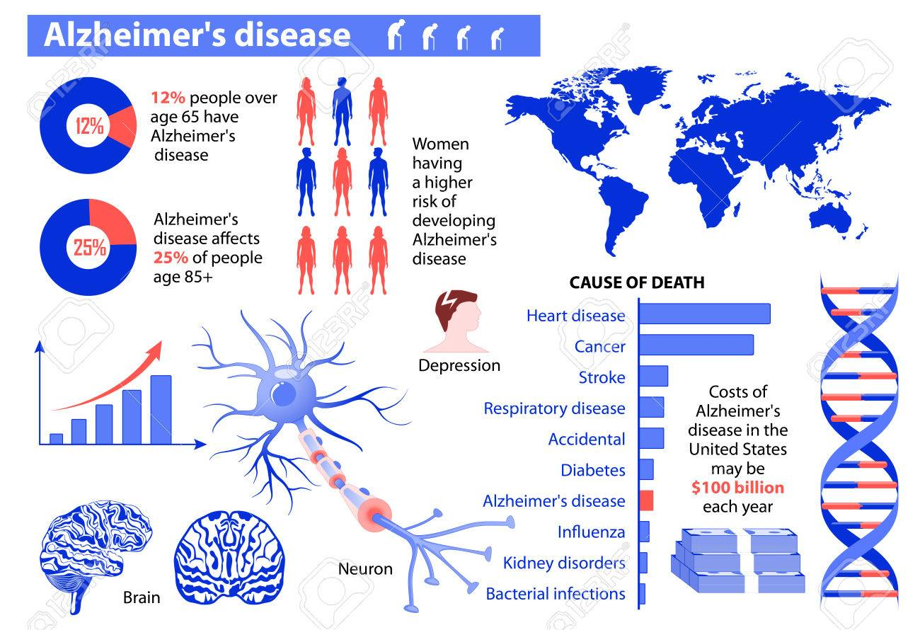 Alzheimers stock photos royalty free business images alzheimers disease medical infographic set elements and symbols for design biocorpaavc Gallery
