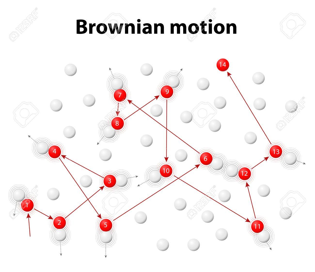 ブラウン運動または Pedesis。一連の異なるランダムな方向に異なる速度 ...
