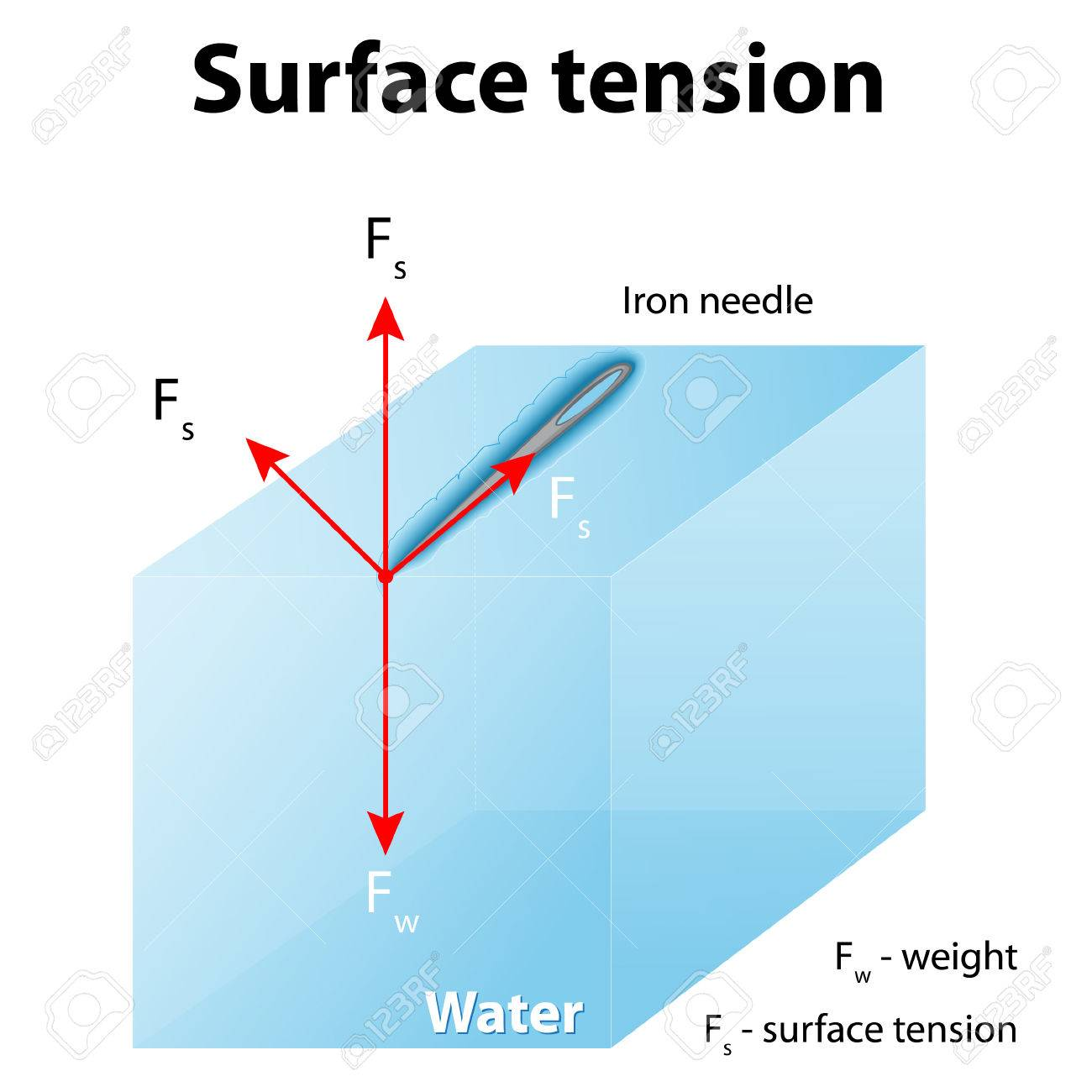 Surface tension. Iron needle stay atop the liquid because of surface tension. If the needle were placed point down on the surface, its weight acting on a smaller area would break the surface, and it would sink. - 54511464