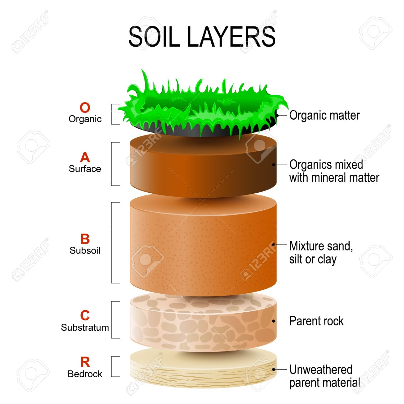 Soil layers soil formation and soil horizons soil is a mixture soil layers soil formation and soil horizons soil is a mixture of plant residue pooptronica Images