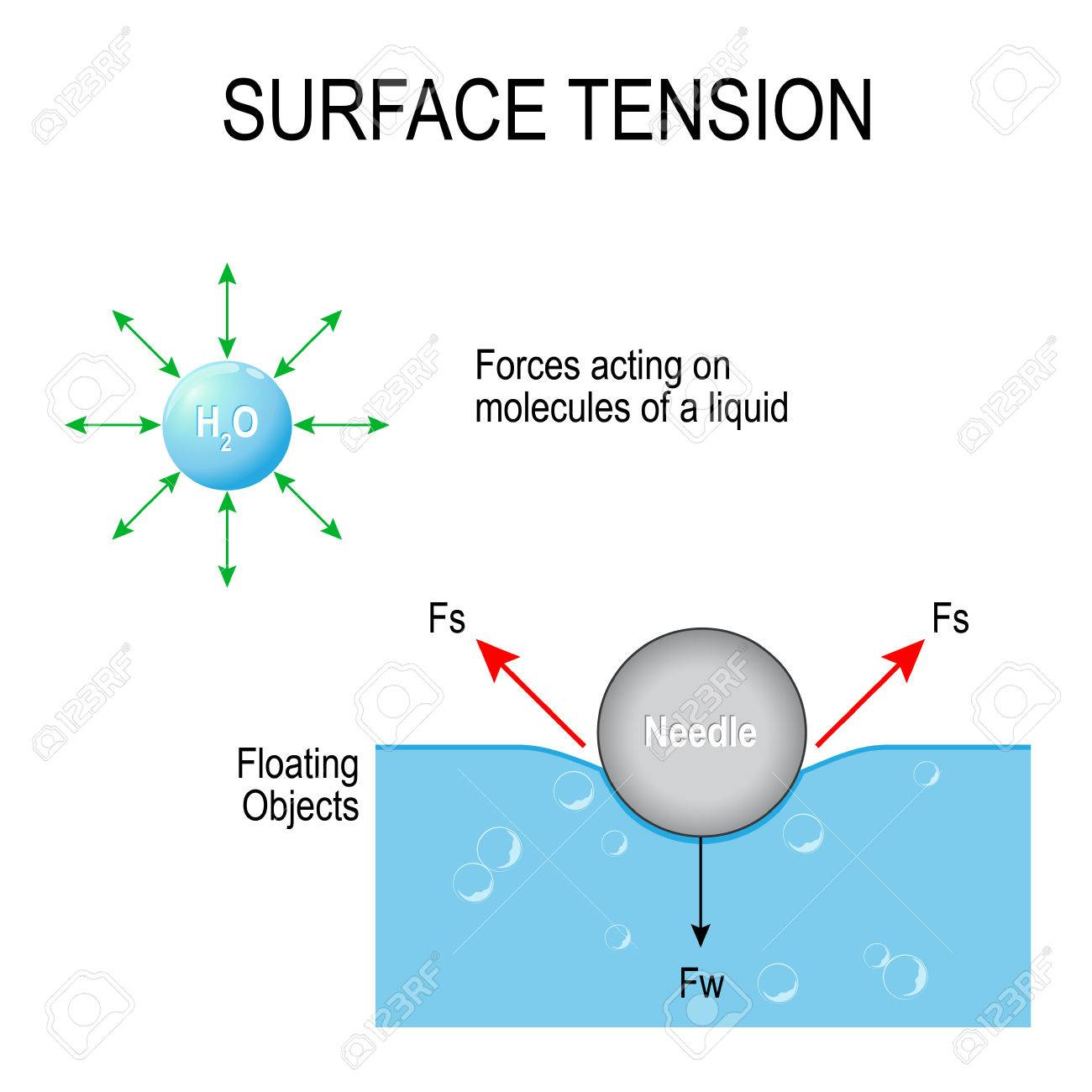 tension diagramme surface tension forces acting on molecules of a liquid and  surface tension forces acting on