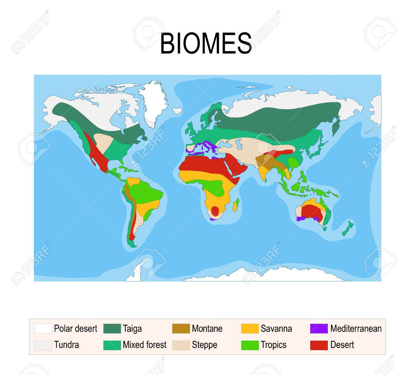 Biomes. Terrestrial Ecosystem Is A Community Of Living Organisms