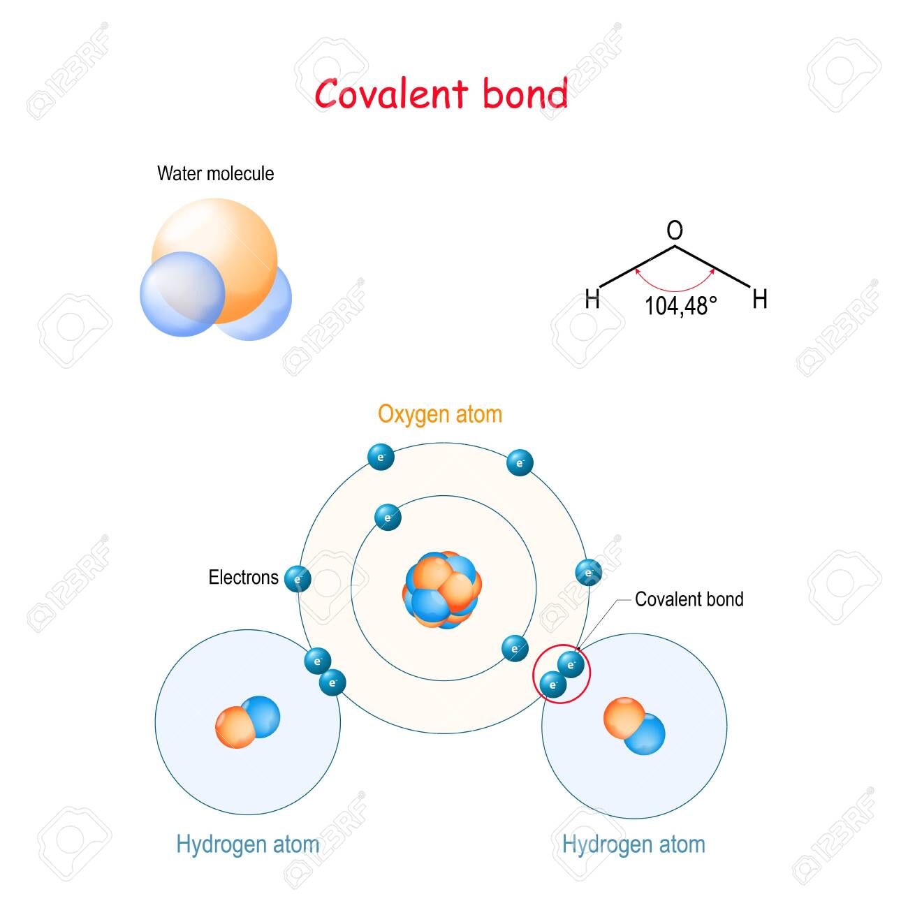 Covalent bond for example water molecule (H2O). is a molecular.. on