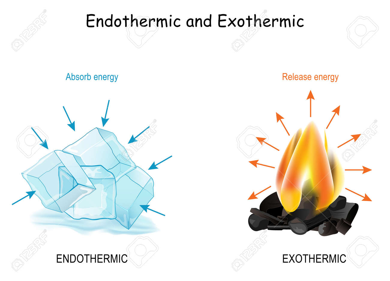 Endothermic and Exothermic chemical reactions. Cold cubes of ice Absorb energy, and hot fire releases energy. Poster for Distance Learning of chemistry and physics - 171348879