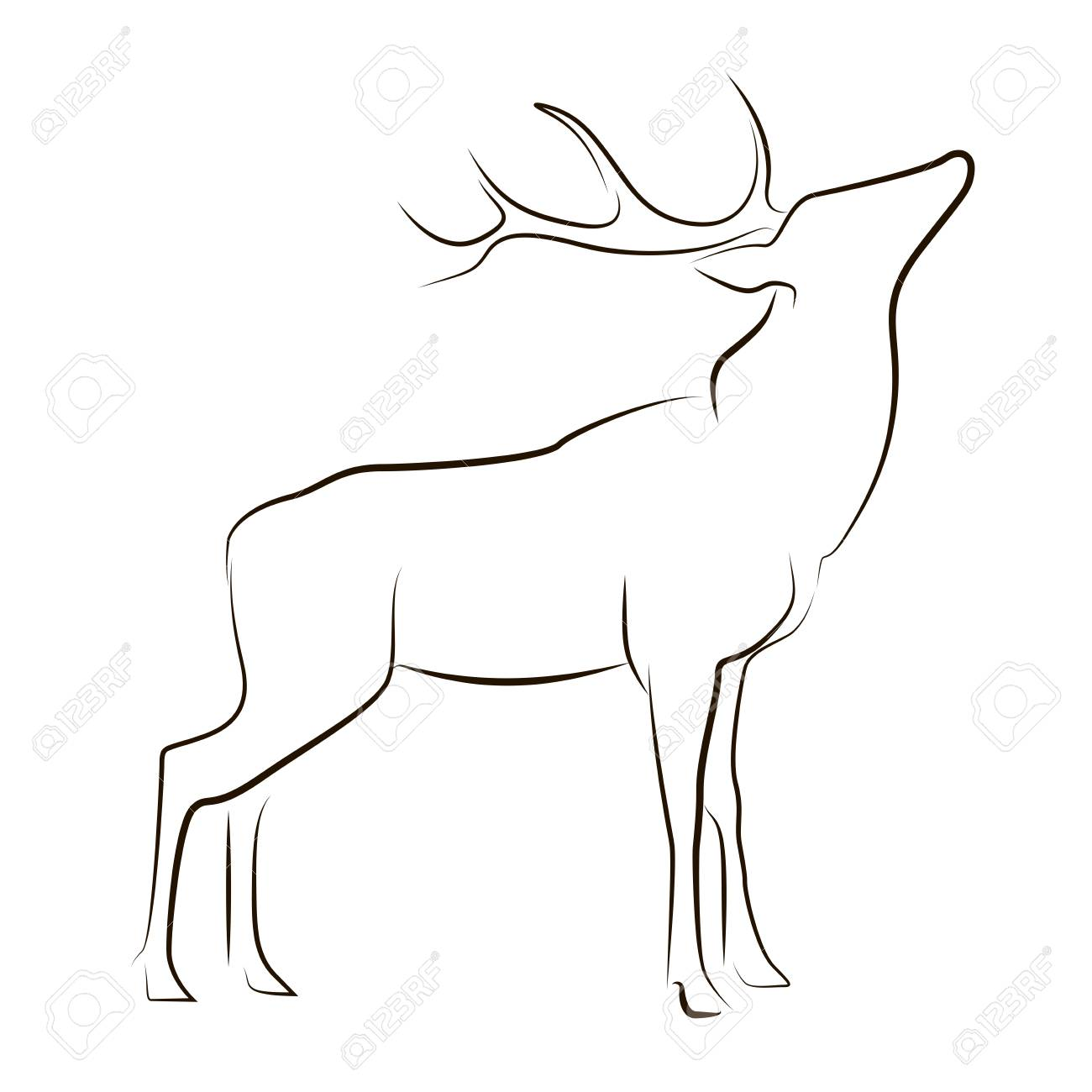Standing Black Line Deer On White Background Hand Drawing Vector Royalty Free Cliparts Vectors And Stock Illustration Image 108857983