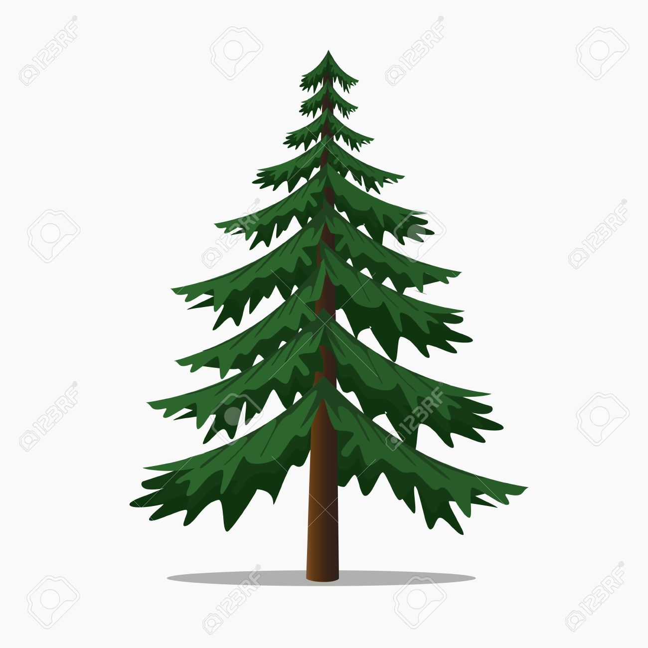 Pine Trees Vector Illustration.isolated Fir and Coniferous Tree. - 68285610